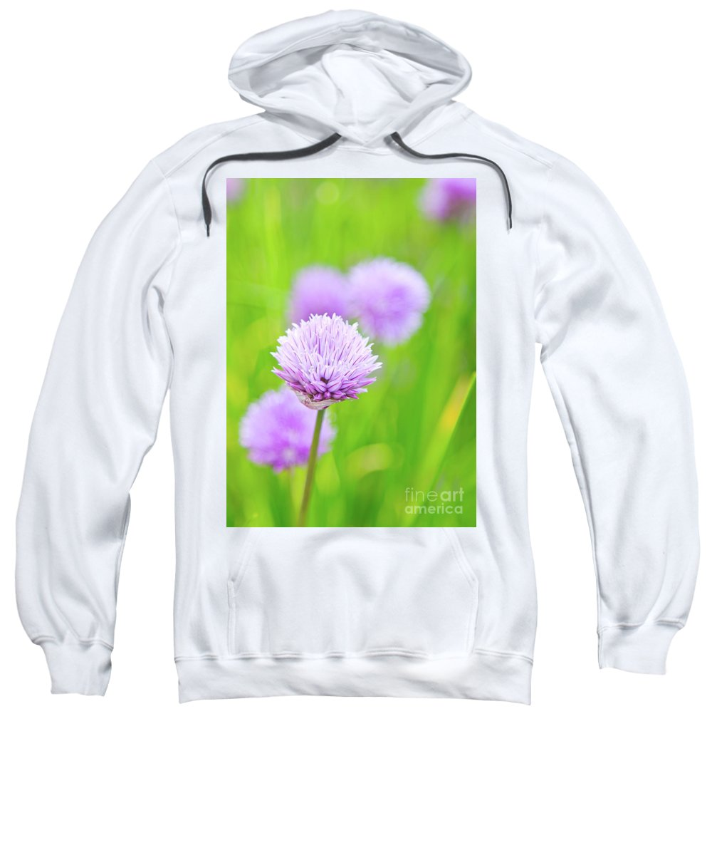 Purple Flowers Sweatshirt featuring the photograph Purple Spring 11 by Alex Art and Photo