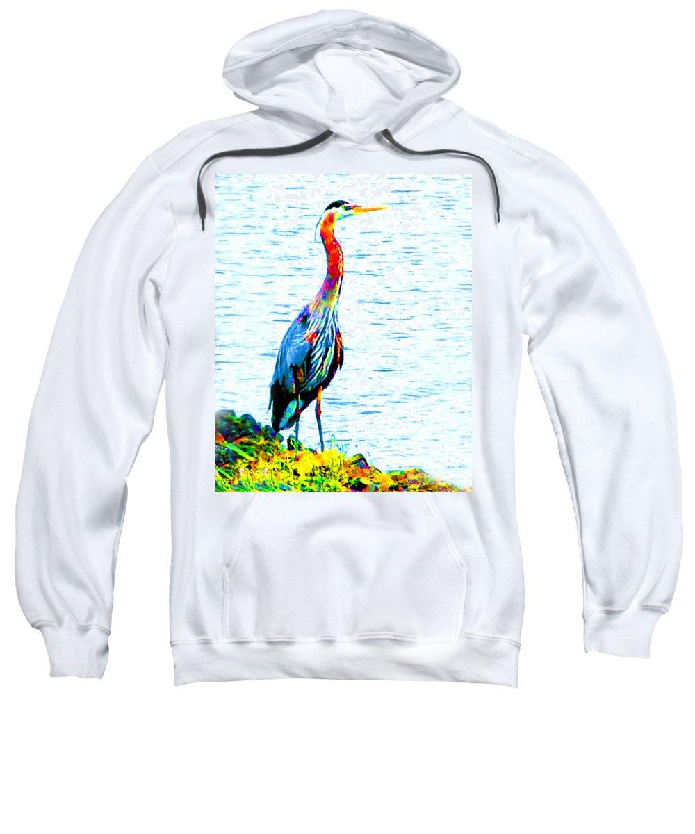 Rainbow Heron Sweatshirt featuring the photograph Rainbow Heron by Nick Gustafson