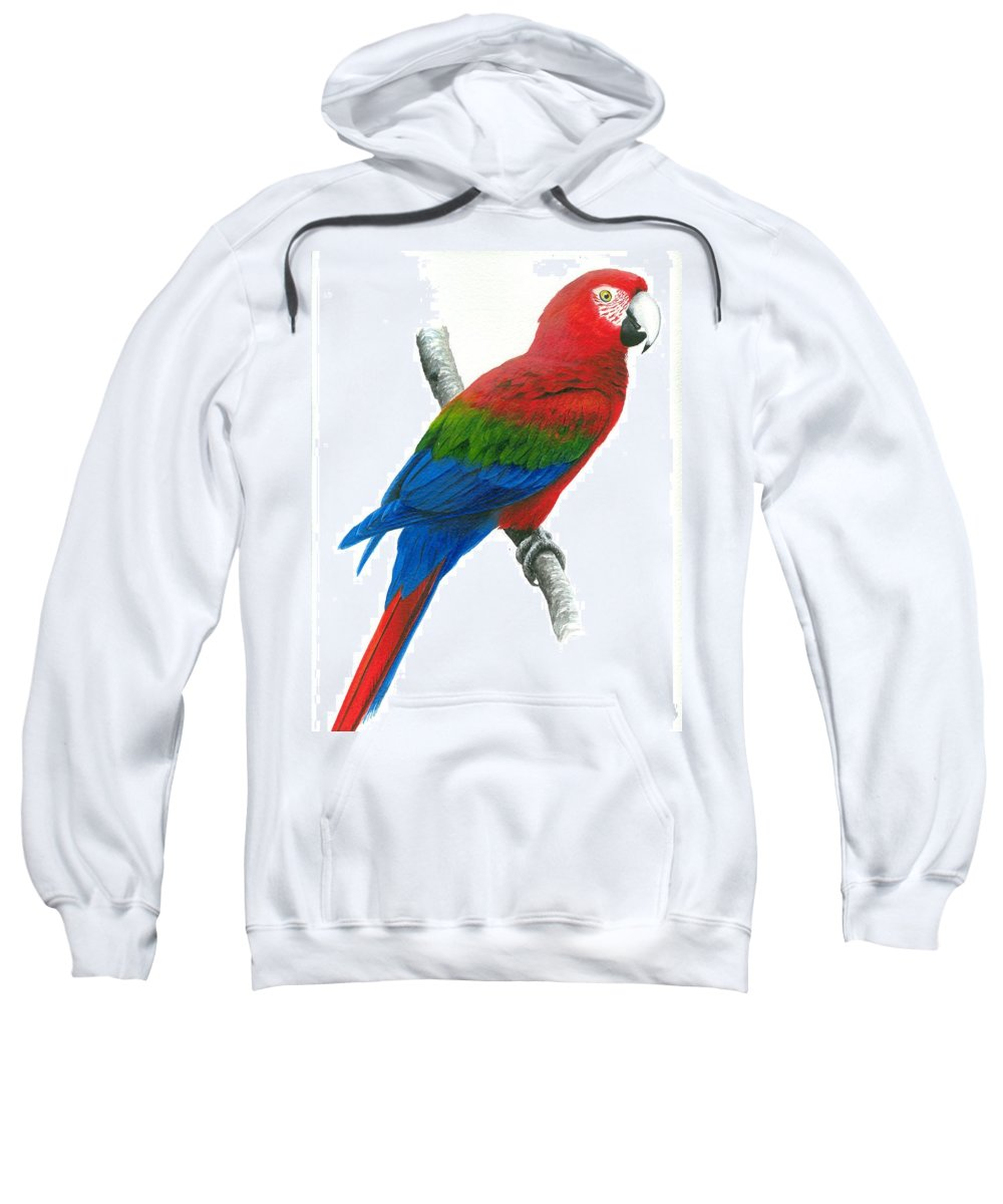 Chris Cox Sweatshirt featuring the painting Red And Green Macaw by Christopher Cox