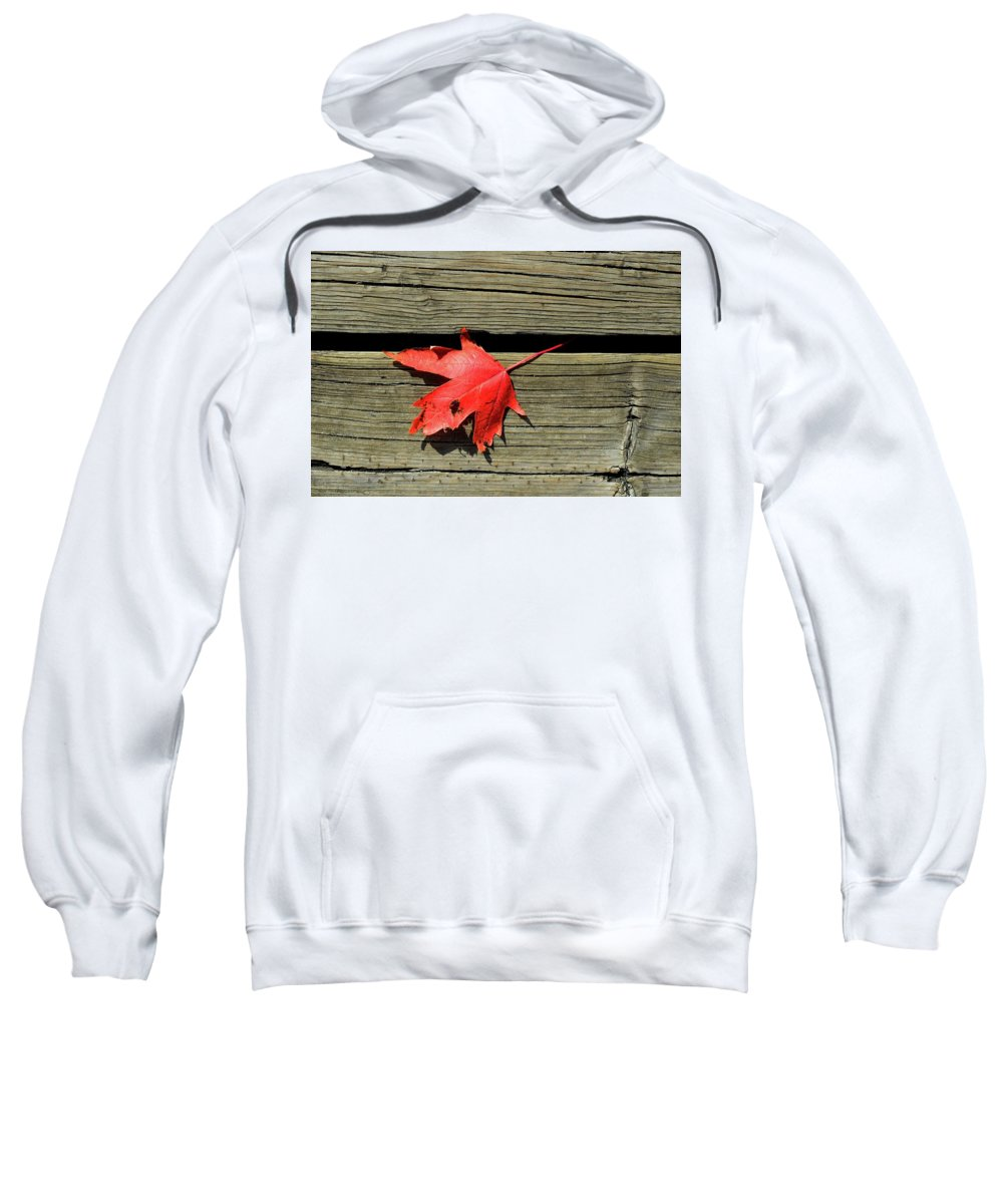 Maple Leaf Sweatshirt featuring the photograph Red Maple Leaf On A Boardwalk by Lyle Crump