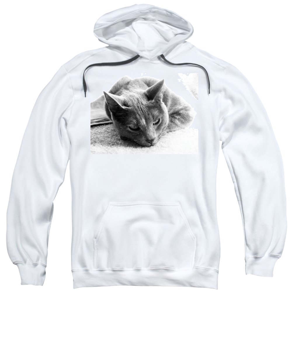 Cats Sweatshirt featuring the photograph Resting by Amanda Barcon