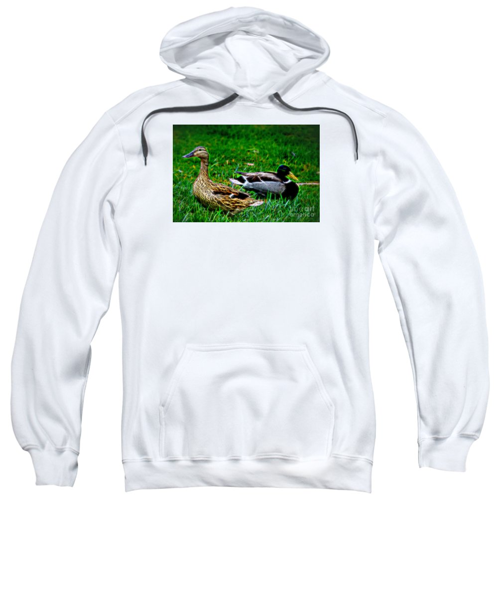 Resting Ducks Sweatshirt featuring the photograph Resting Ducks by Mariola Bitner