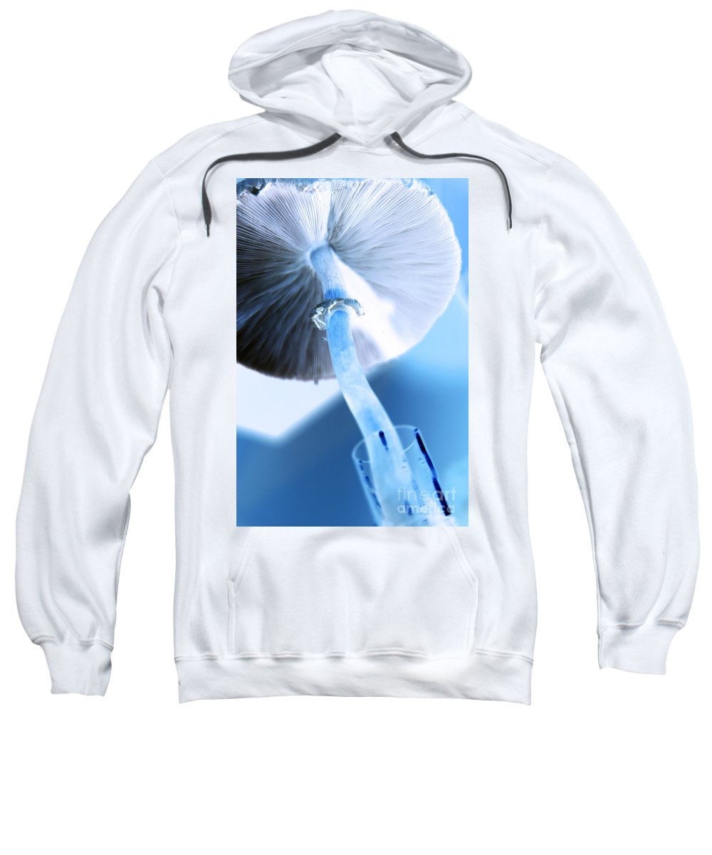 modern Mushroom Sweatshirt featuring the photograph Rise by Amanda Barcon