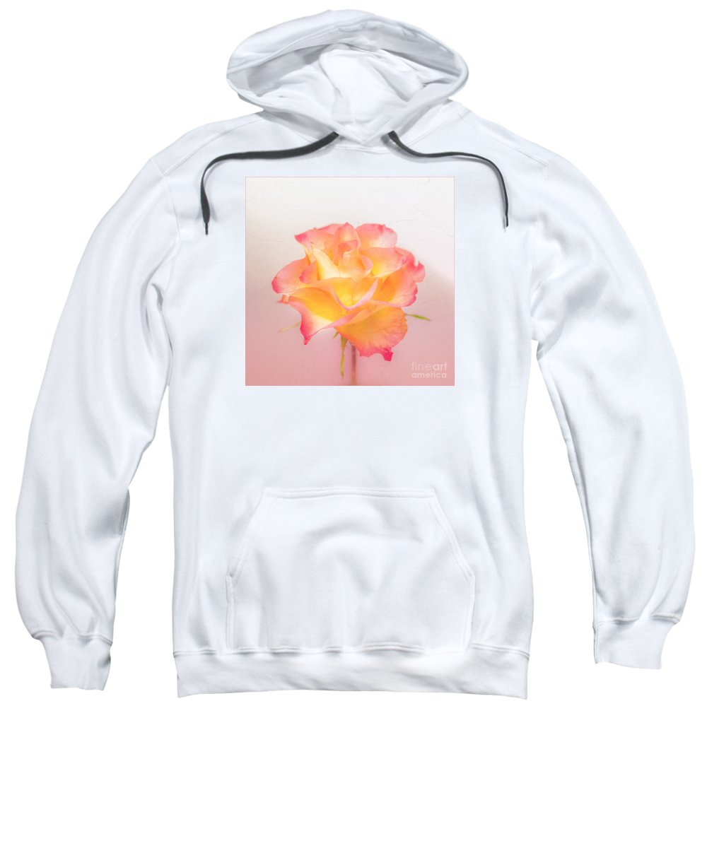 Pink Flowers Sweatshirt featuring the photograph Rosalie by Mona Stut