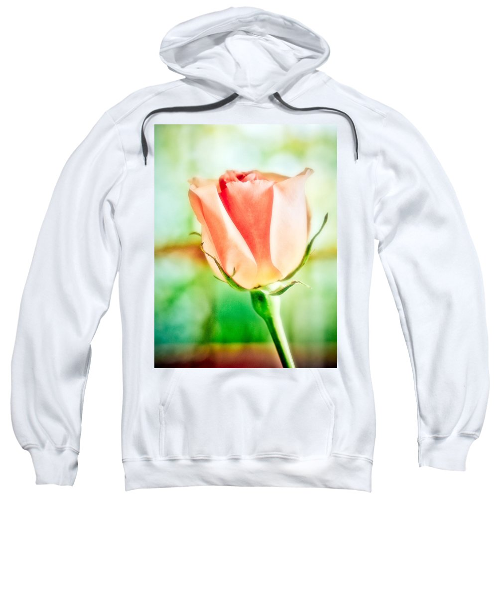 Rose Sweatshirt featuring the photograph Rose In Window by Marilyn Hunt