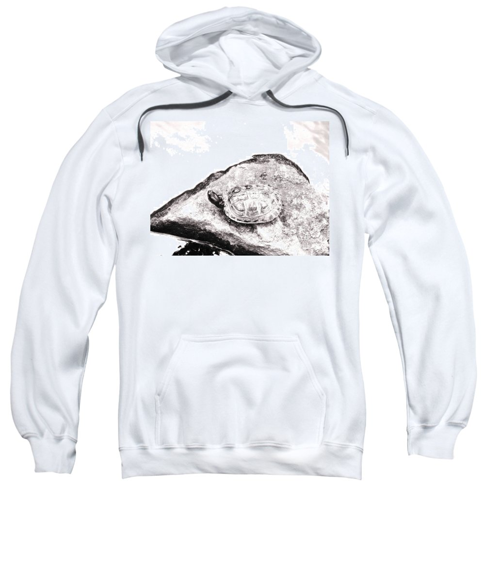 Pond Sweatshirt featuring the photograph Rubbernecking Pond Turtle by Deborah Crew-Johnson