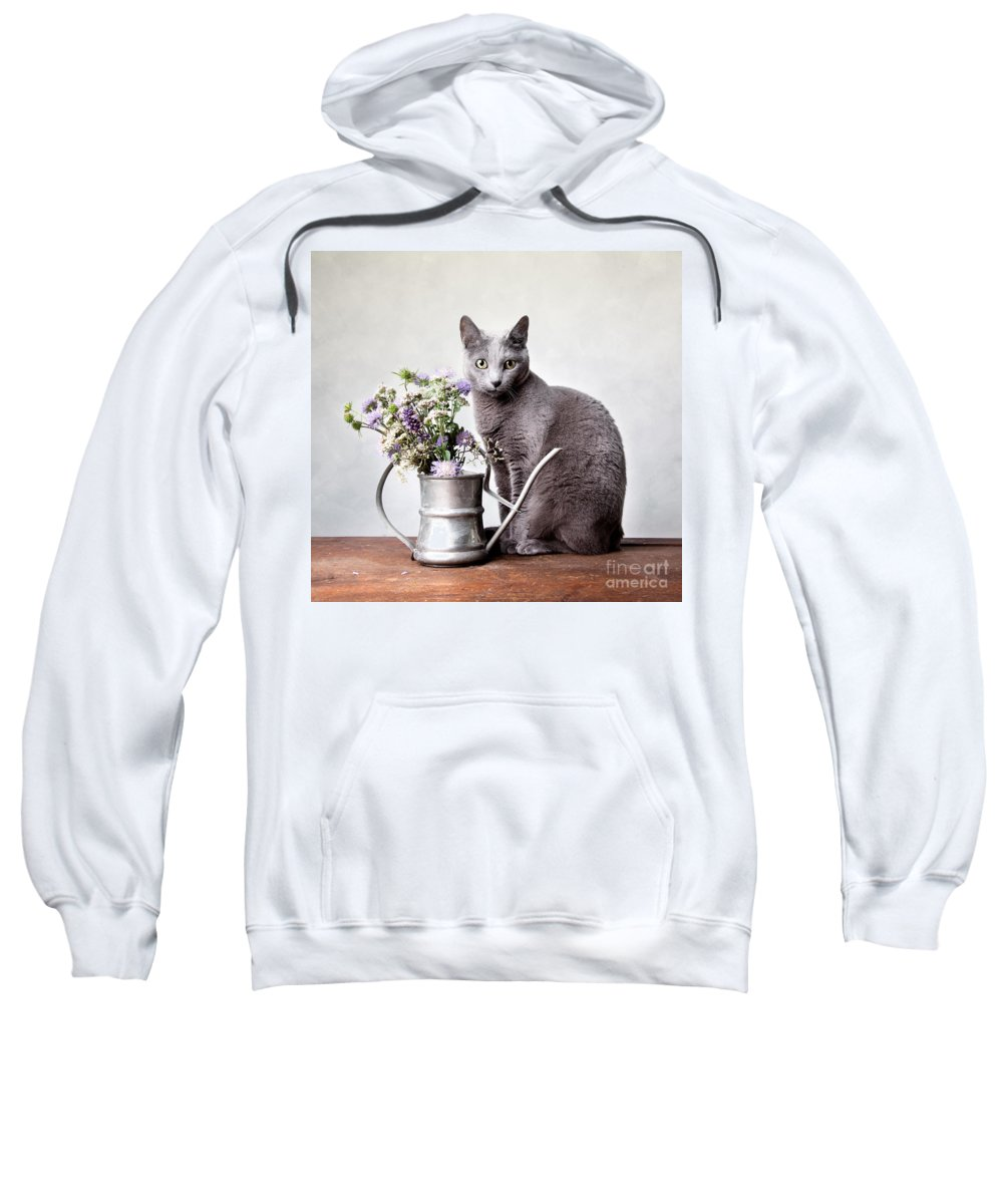 Cat Sweatshirt featuring the photograph Russian Blue 02 by Nailia Schwarz