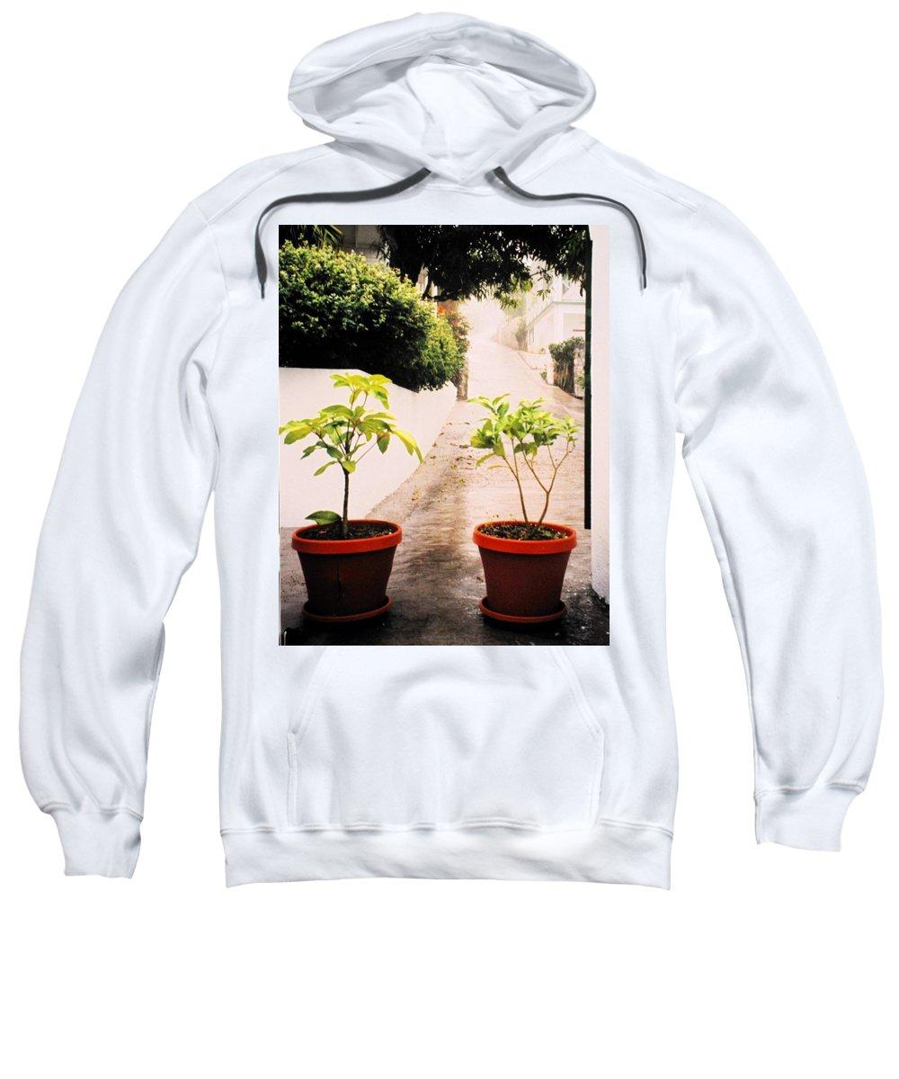 Saba Sweatshirt featuring the photograph Saba by Ian MacDonald