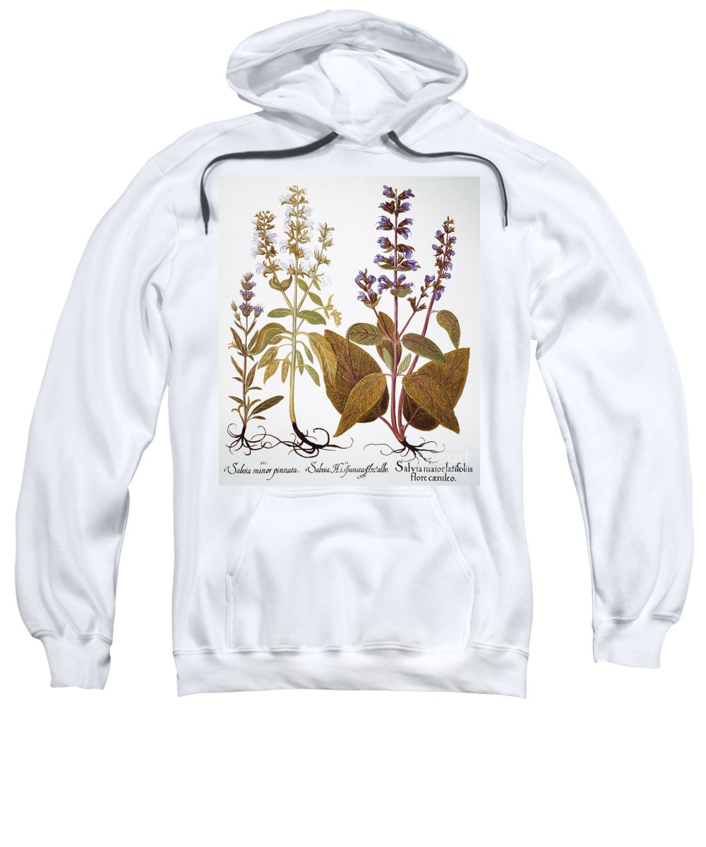 1613 Sweatshirt featuring the photograph Sage, 1613 by Granger
