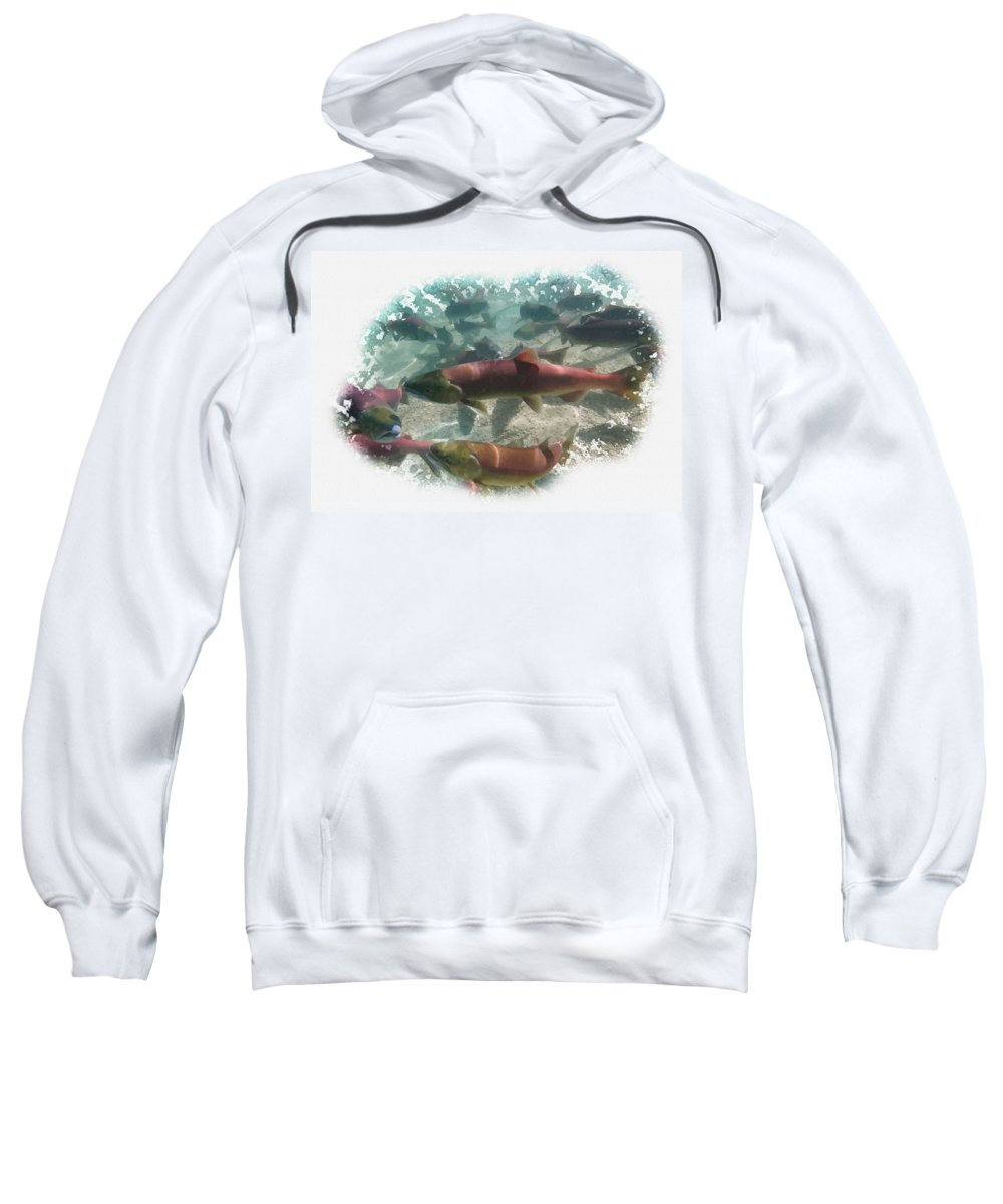 Art & Collectibles Sweatshirt featuring the digital art Salmon Migration by Don Kuing