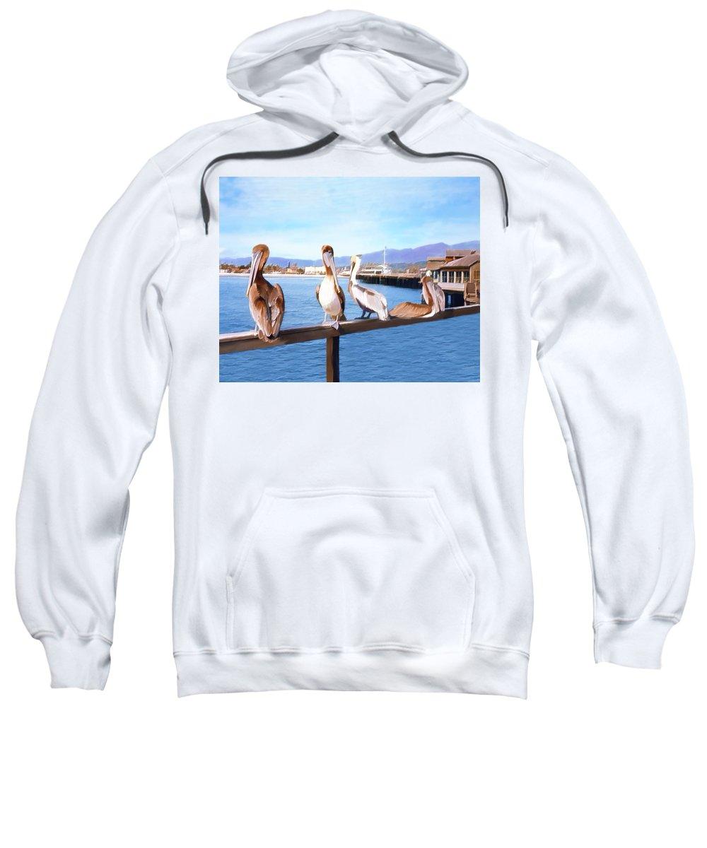 Harbor Sweatshirt featuring the photograph Santa Barbara Pelicans by Kurt Van Wagner