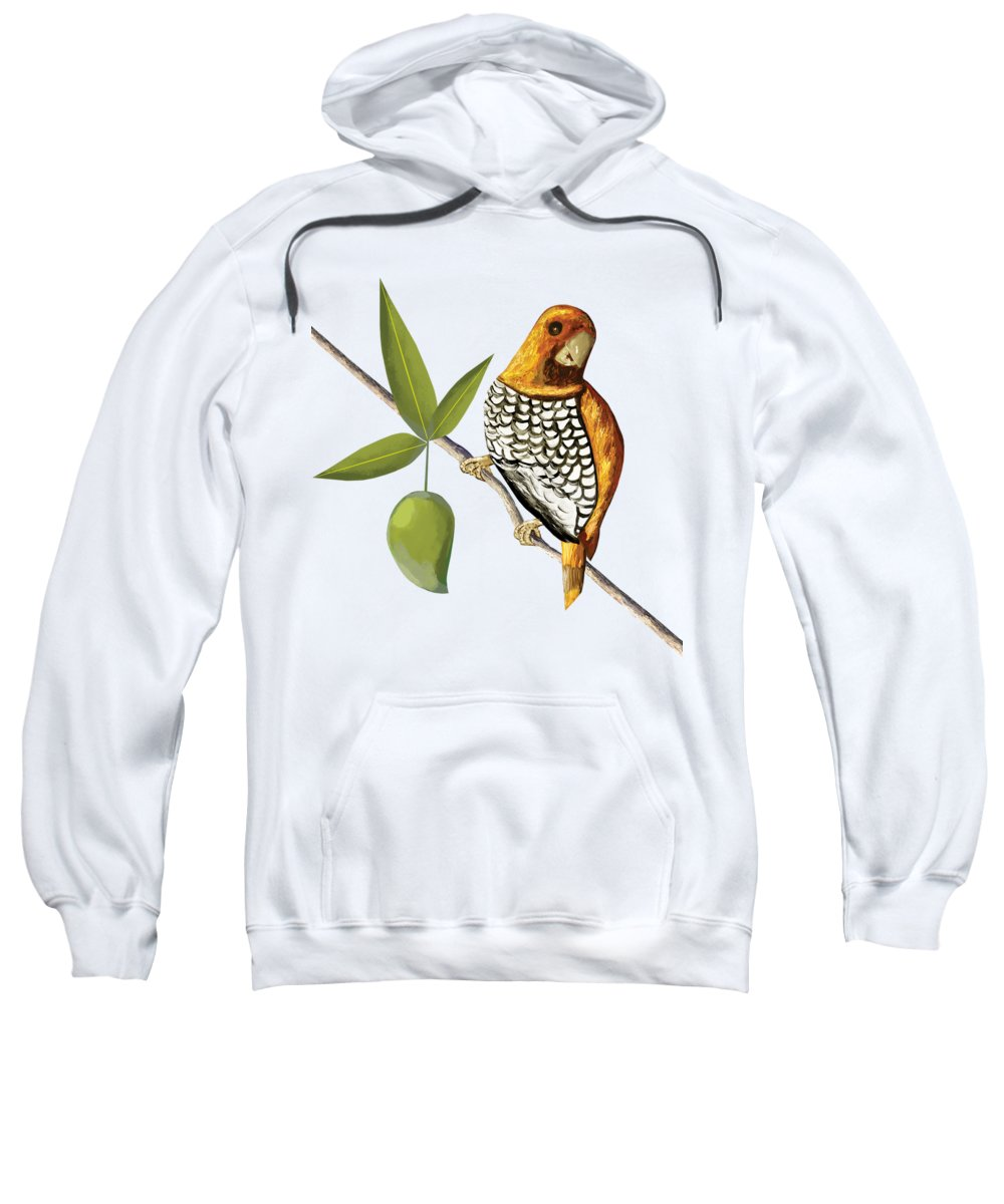 Mango Hooded Sweatshirts T-Shirts