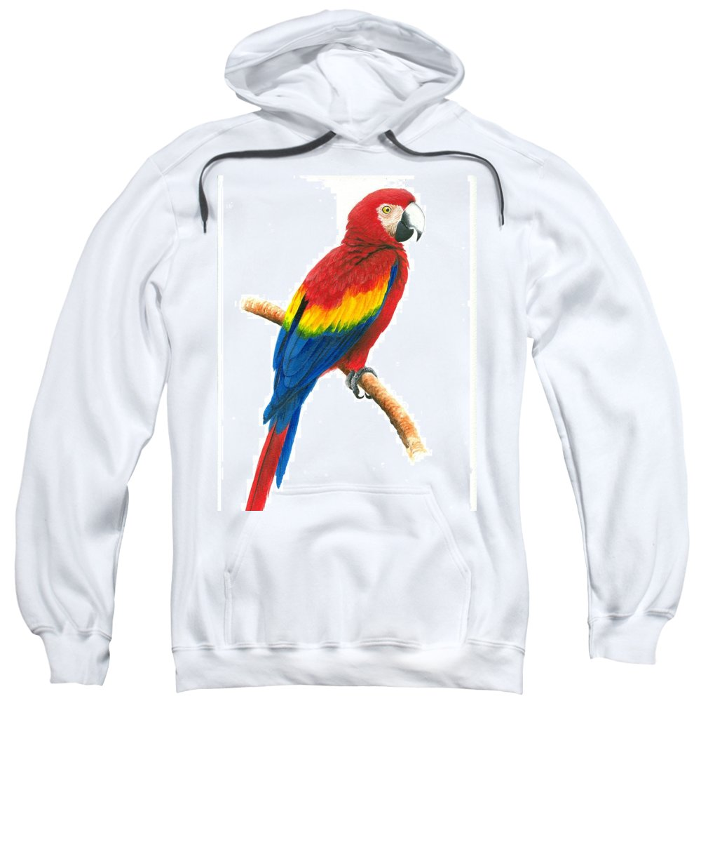 Chris Cox Sweatshirt featuring the painting Scarlet Macaw by Christopher Cox