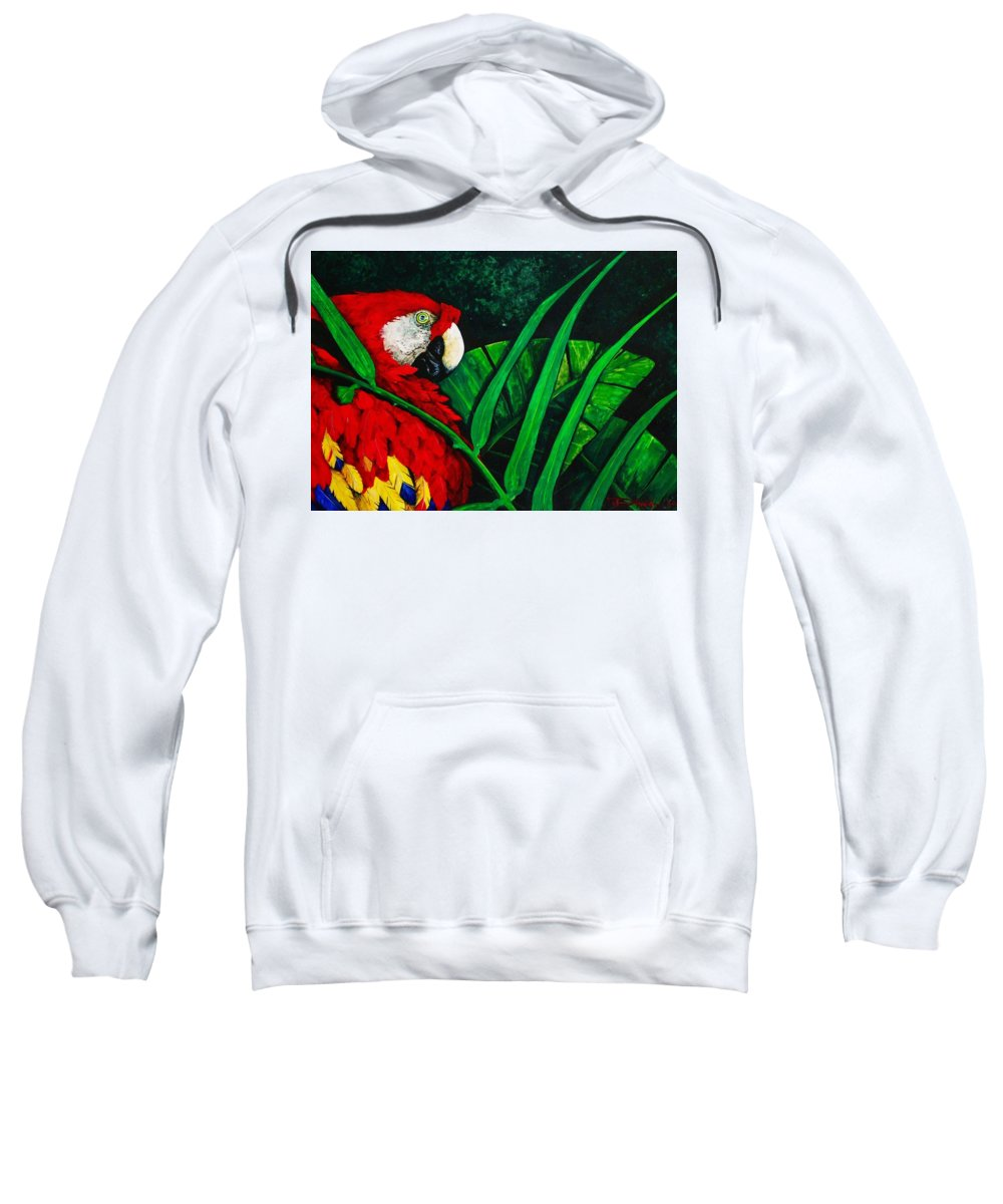 Birds Sweatshirt featuring the painting Scarlet Macaw Head Study by Dana Newman
