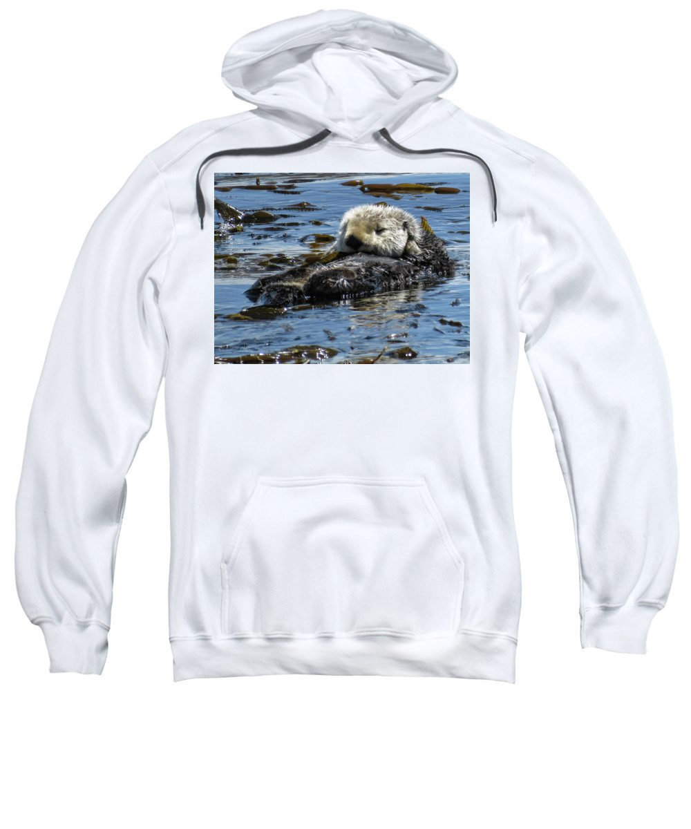 California Sea Otter Sweatshirt featuring the photograph Sea Otter by Helaine Cummins