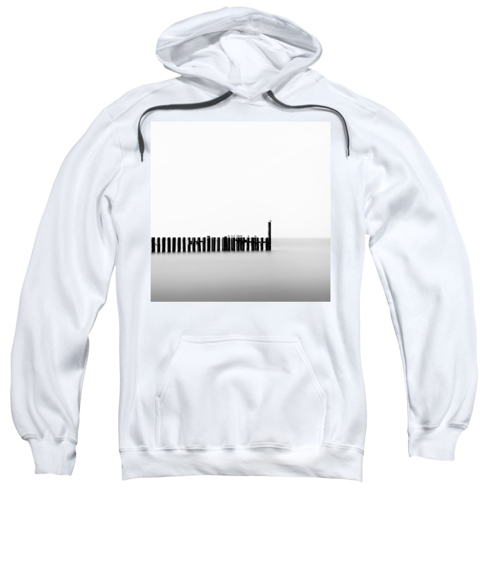 Groynes Sweatshirt featuring the photograph Seagulls And Groynes by Dave Bowman