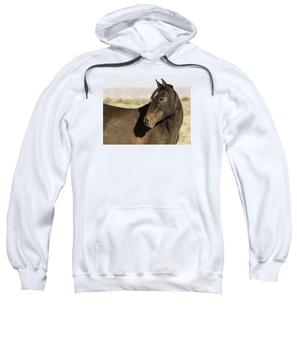 Wyoming Sweatshirt featuring the photograph Shadow Spirit by Elizabeth Eldridge