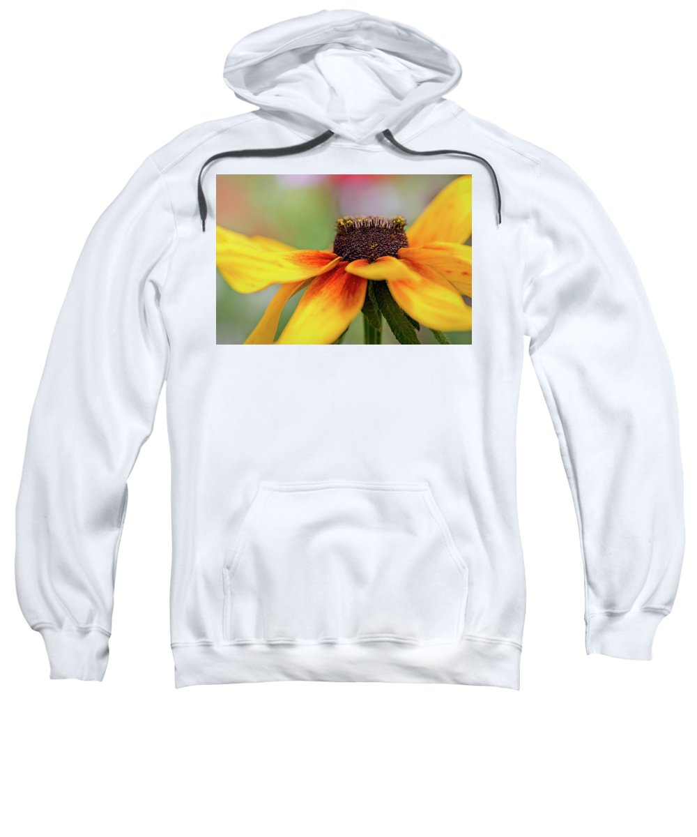 Flower Sweatshirt featuring the pyrography Shine For Me by Hanna Tor