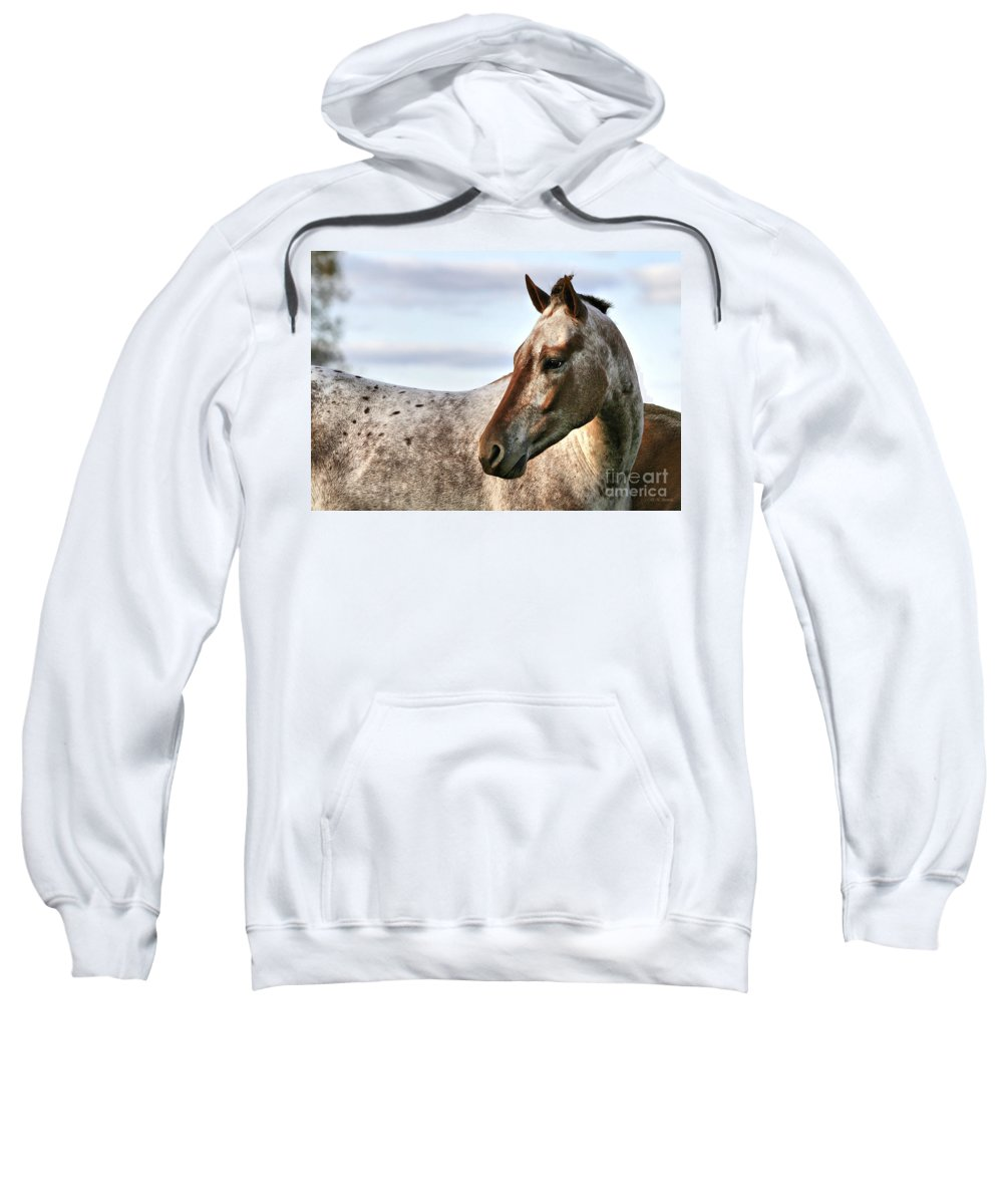 Animal Sweatshirt featuring the photograph Sid by Deborah Benoit