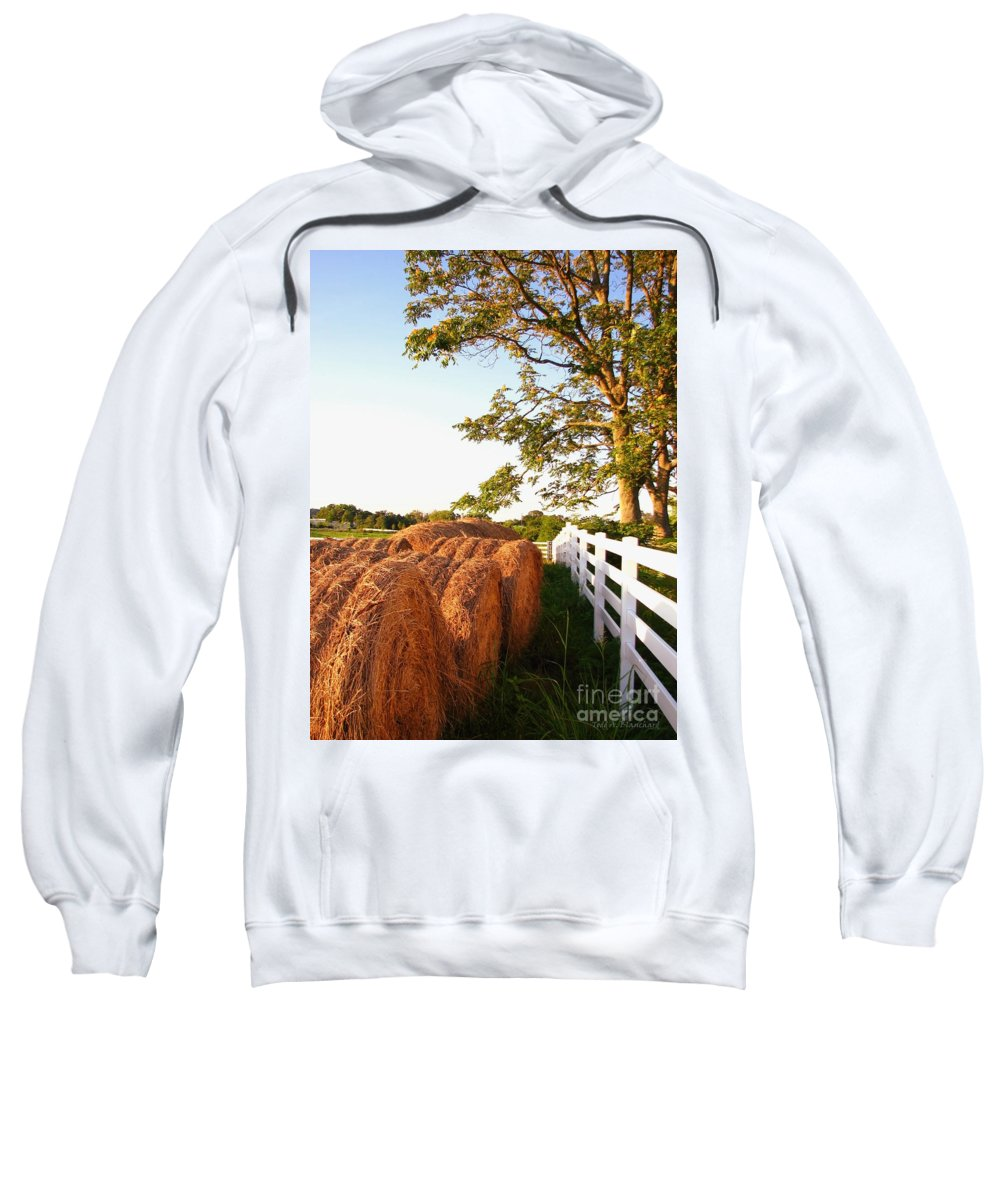Landscape Sweatshirt featuring the photograph Side-by-side by Todd Blanchard