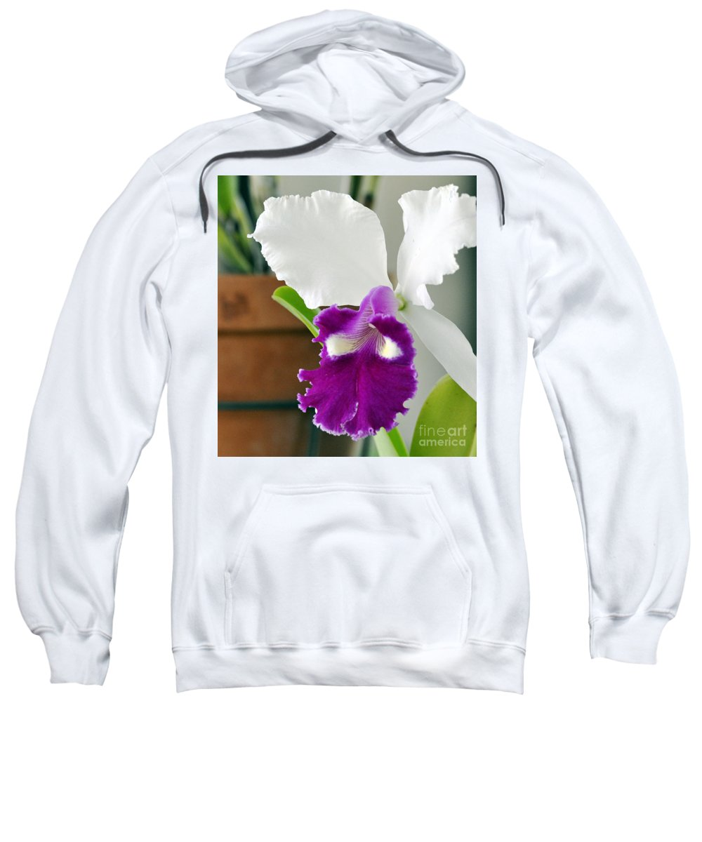 Clay Sweatshirt featuring the photograph Smile by Clayton Bruster