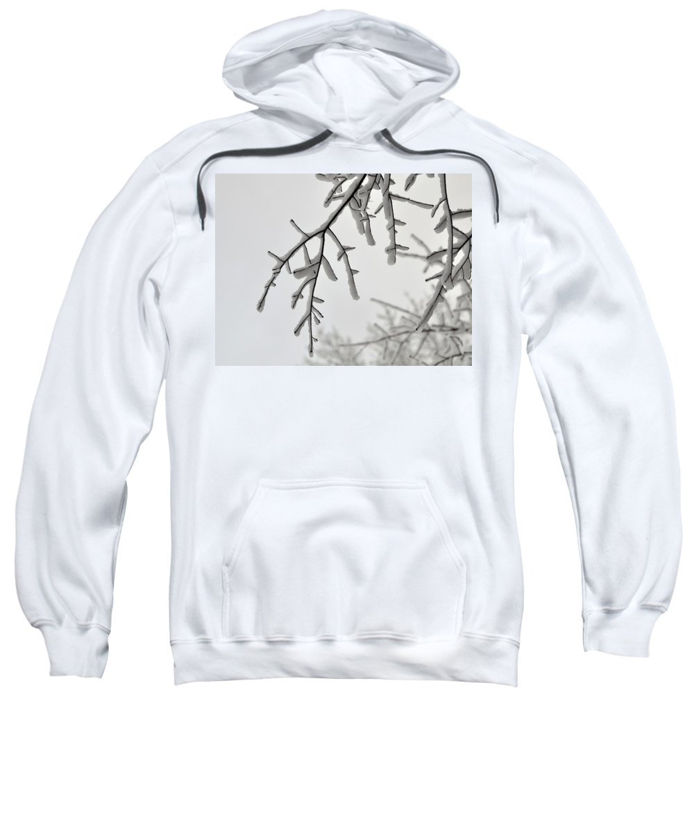 Snow Sweatshirt featuring the photograph Snow Covered Branches by Al Powell Photography USA