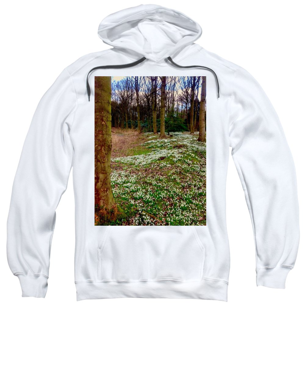 Snowdrops Sweatshirt featuring the photograph Snowdrop Woods by Joan-Violet Stretch