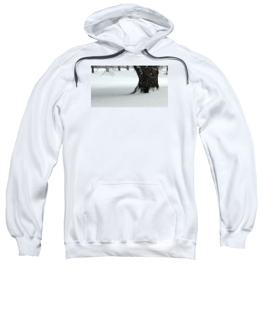 Trees Sweatshirt featuring the photograph Snowflakes by Joni Moseng