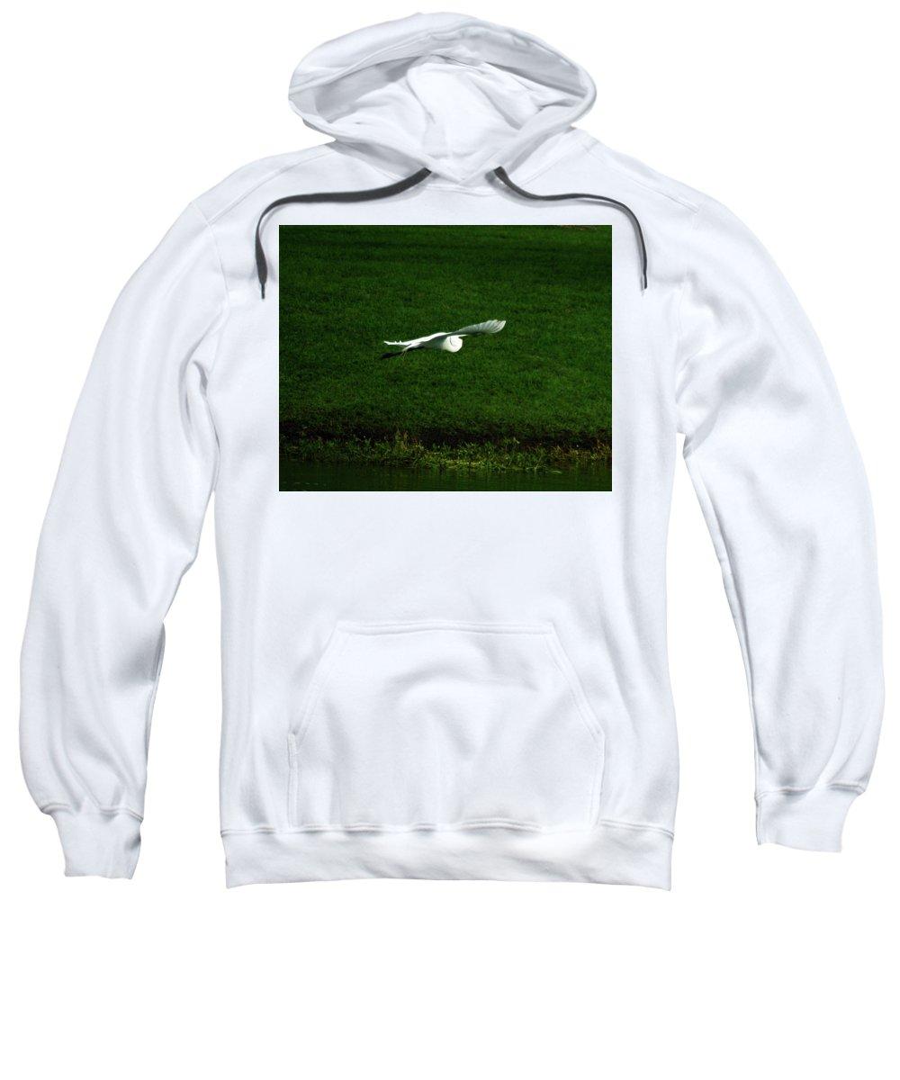 Egret Sweatshirt featuring the photograph Soar by Brandi Gordon