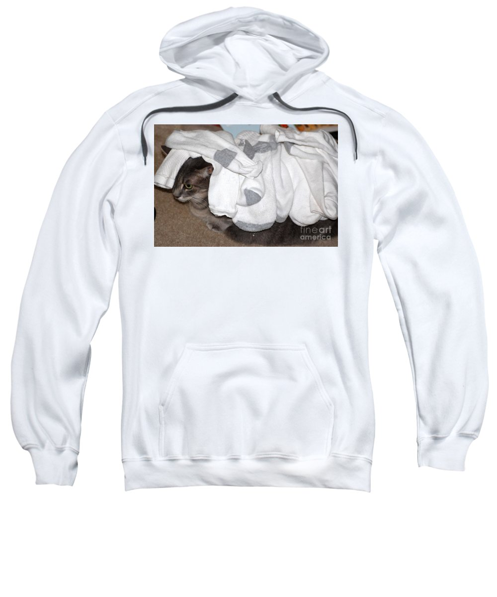 Socks Sweatshirt featuring the photograph Sock It To Me by Donna Bentley