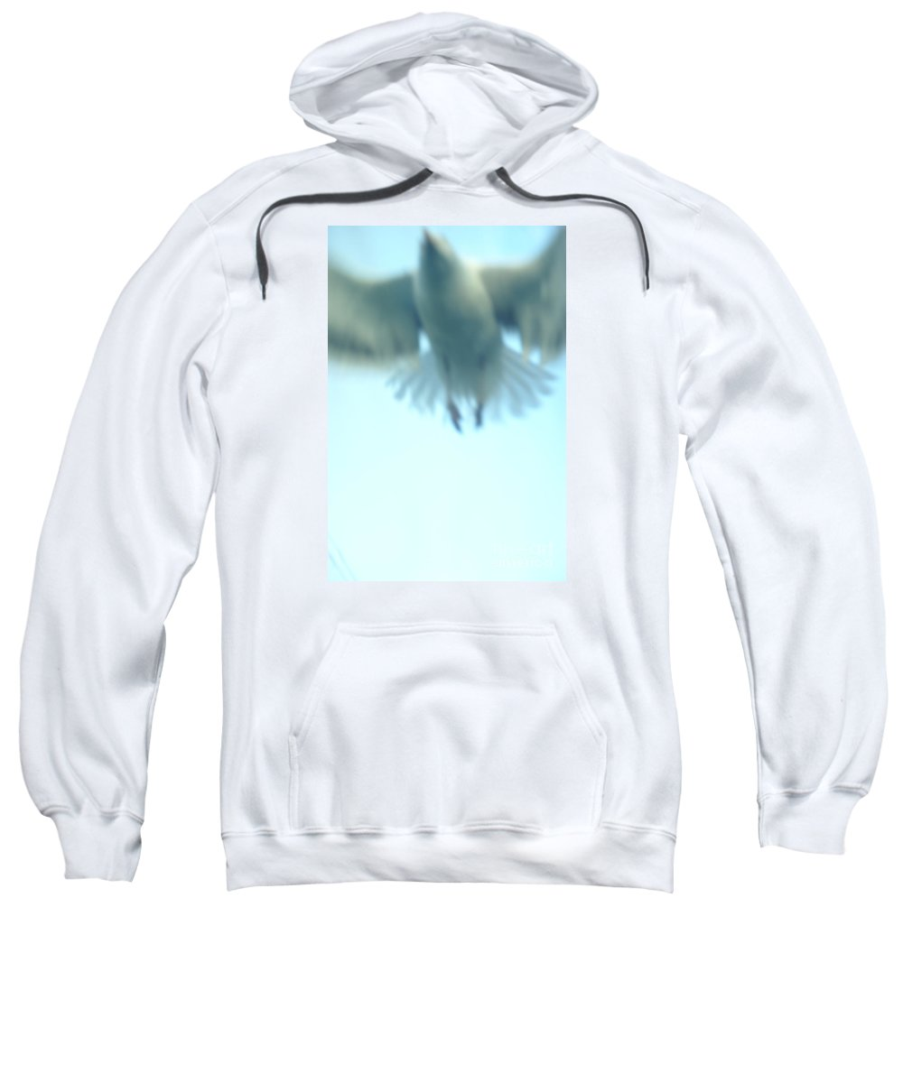 Seagull Sweatshirt featuring the photograph Someday Soon by Linda Shafer