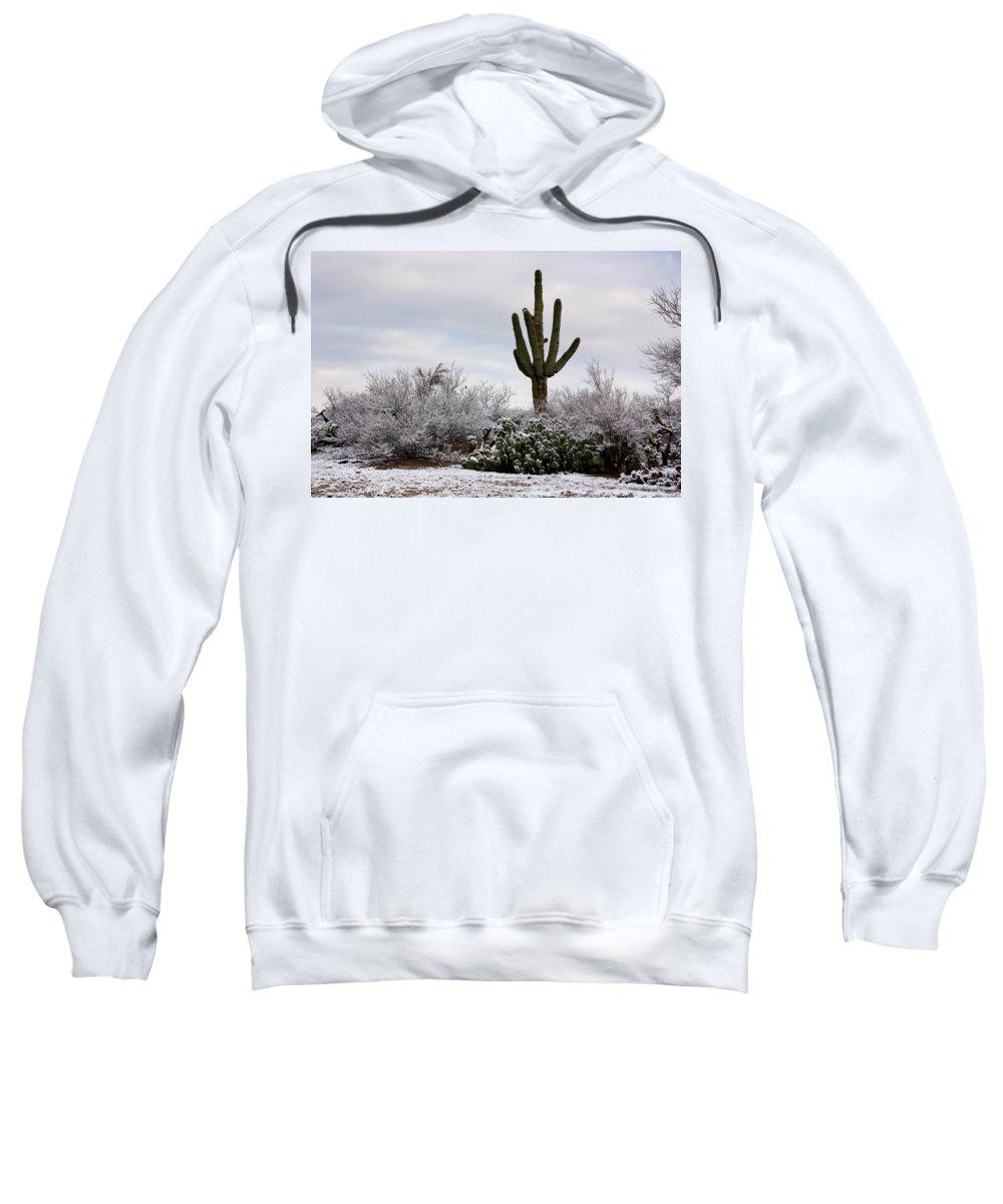 Saguaro Sweatshirt featuring the photograph Sonora Desert Winter by Joe Kozlowski