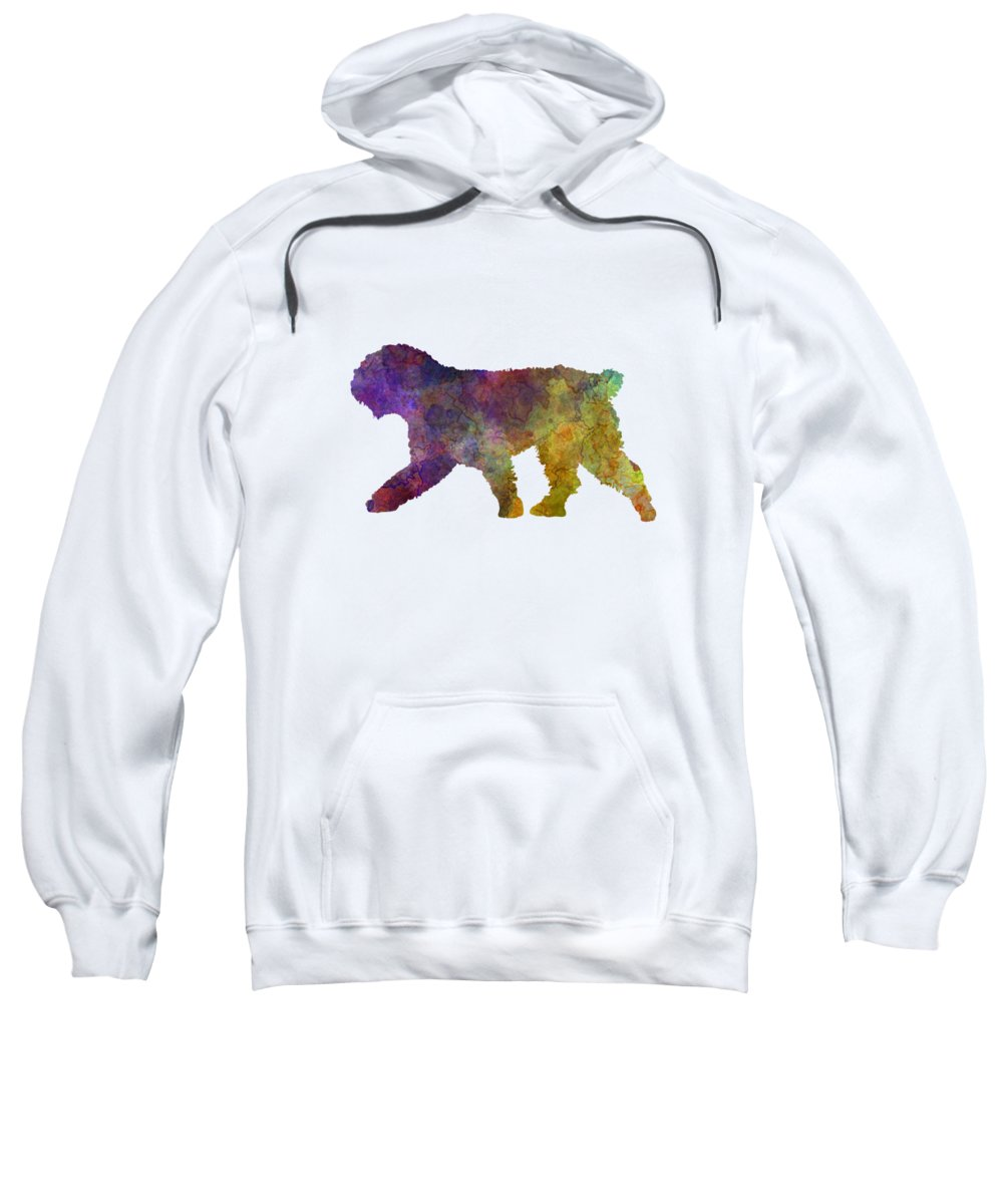 Andalusia Hooded Sweatshirts T-Shirts