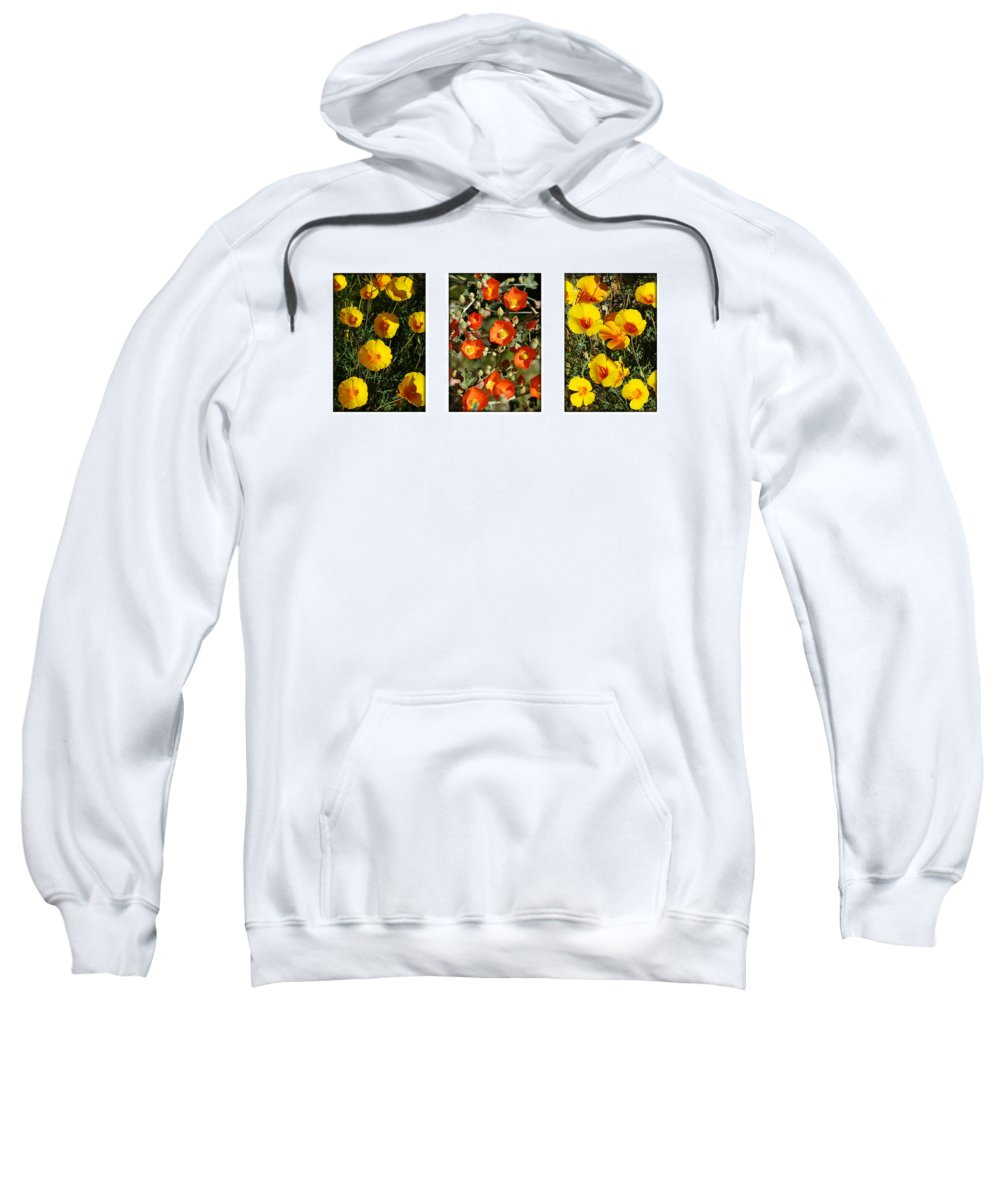 Arizona Sweatshirt featuring the photograph Spring - Desert Style 2 by Jill Reger
