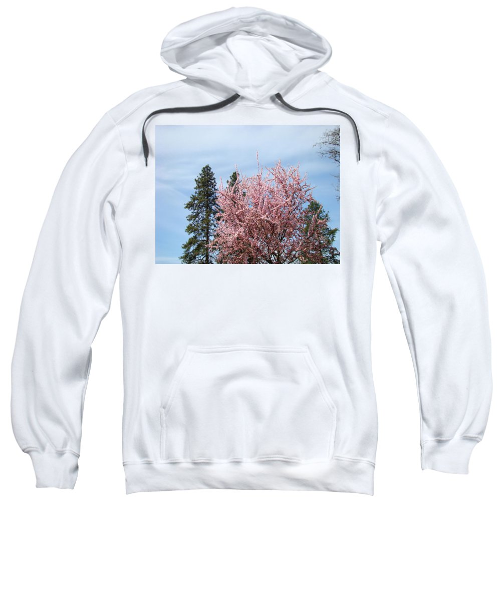 Trees Sweatshirt featuring the photograph Spring Trees Bossoming Landscape Art Prints Pink Blossoms Clouds Sky by Baslee Troutman