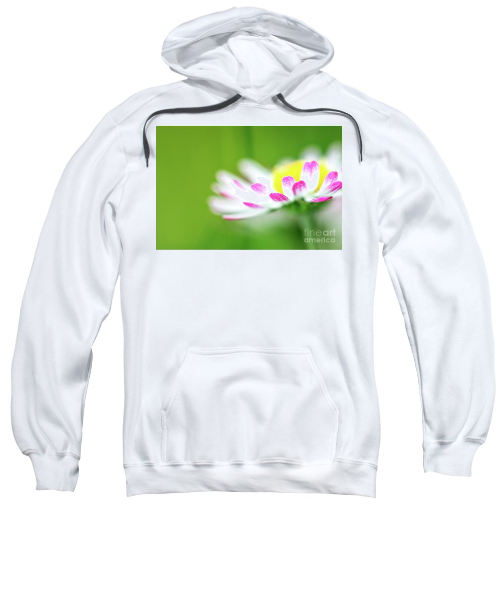 Background Sweatshirt featuring the photograph Springtime - Flower by PhotoGranary