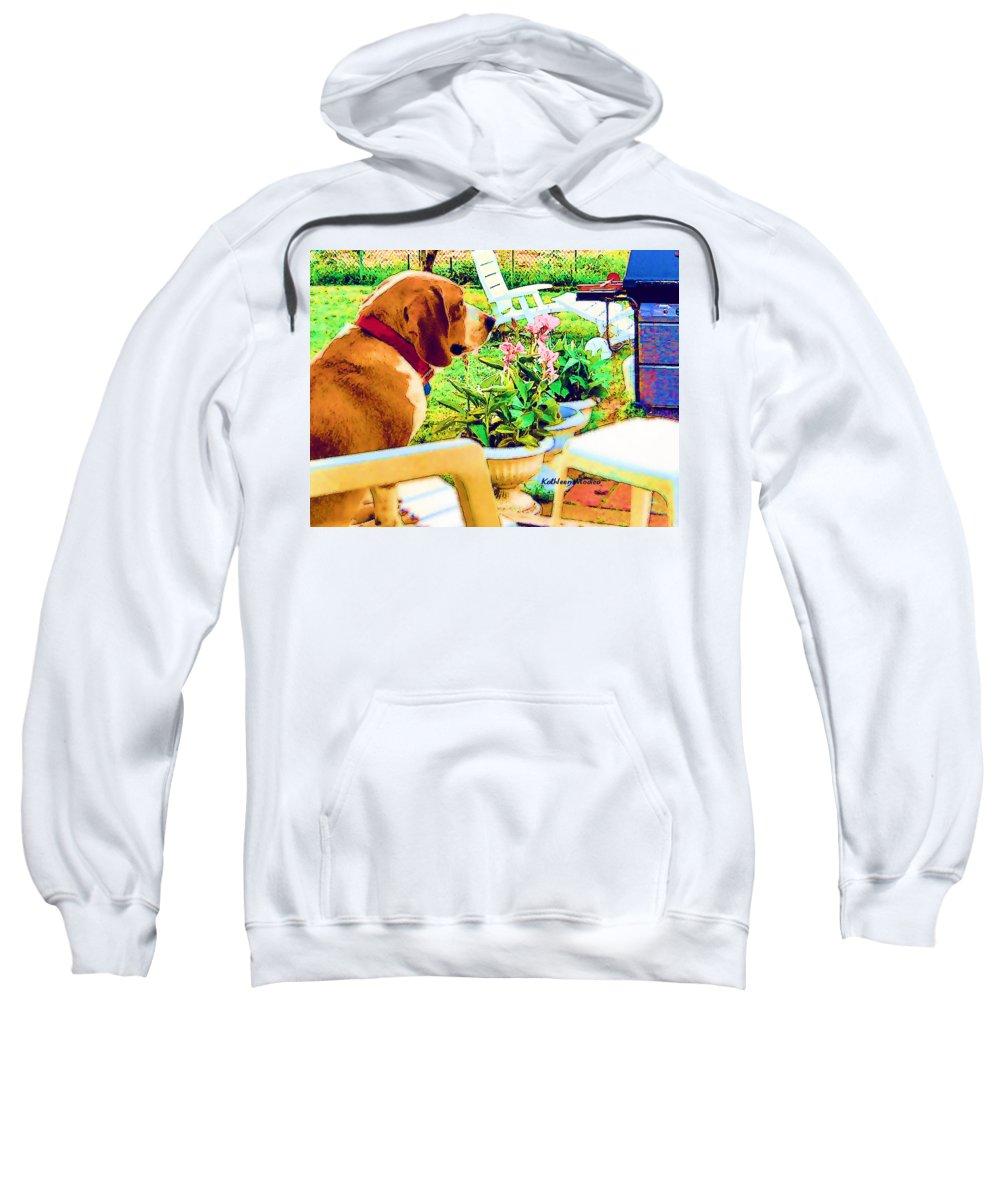 Beagle Art Sweatshirt featuring the painting Springtime by KLM Kathel