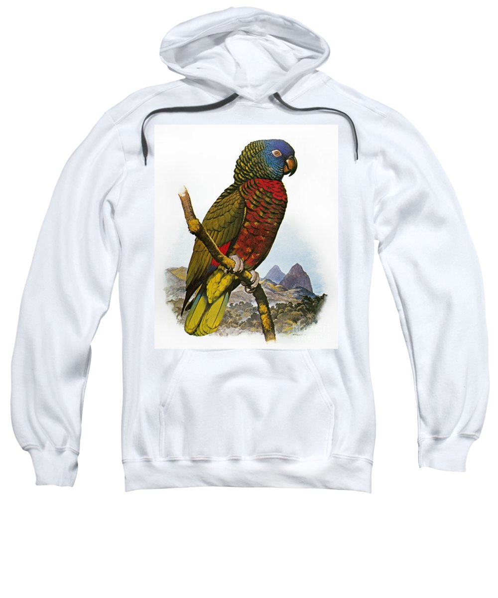 Amazon Sweatshirt featuring the photograph St Lucia Amazon Parrot by Granger