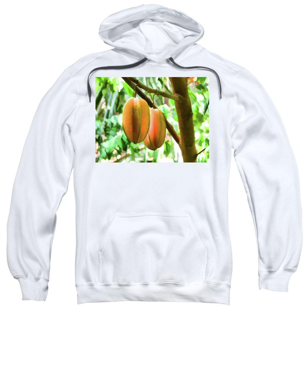 Star Apple Fruit On The Tree Sweatshirt featuring the painting Star Fruit On The Tree by Jeelan Clark