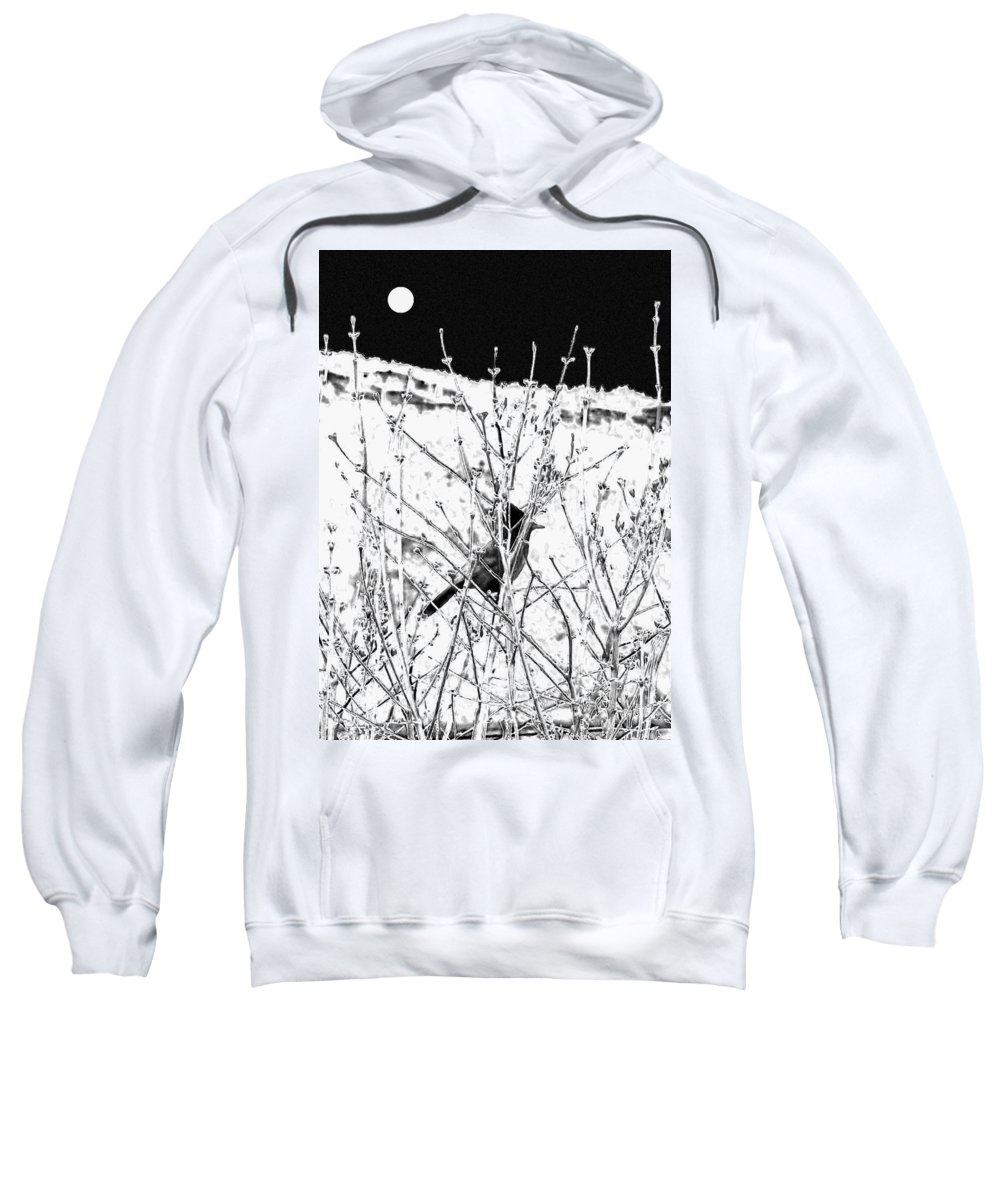 Stellar Jay Sweatshirt featuring the digital art Stellar Jay  by Will Borden