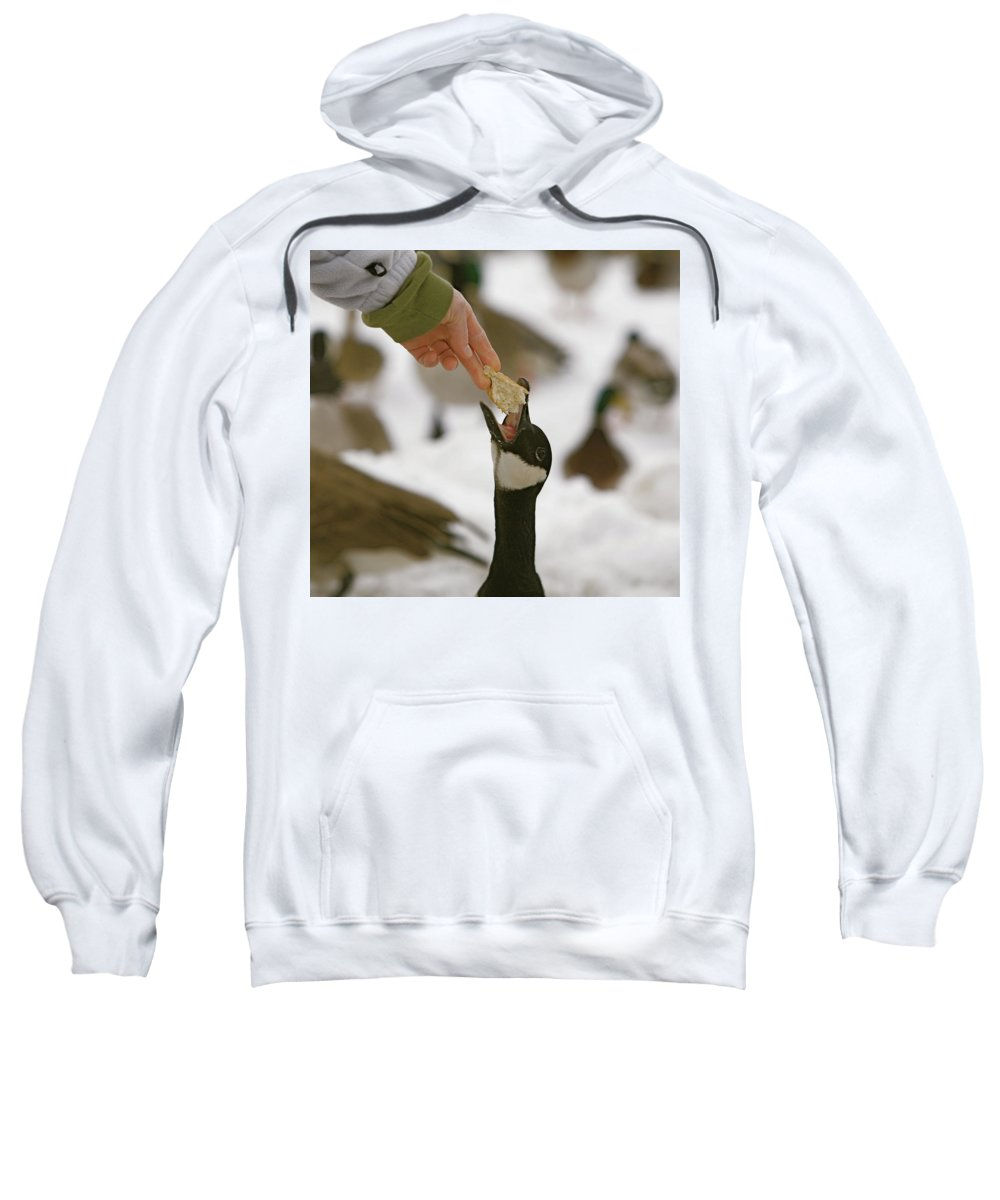 Birds Sweatshirt featuring the photograph Sticking My Neck Out by Robert Pearson