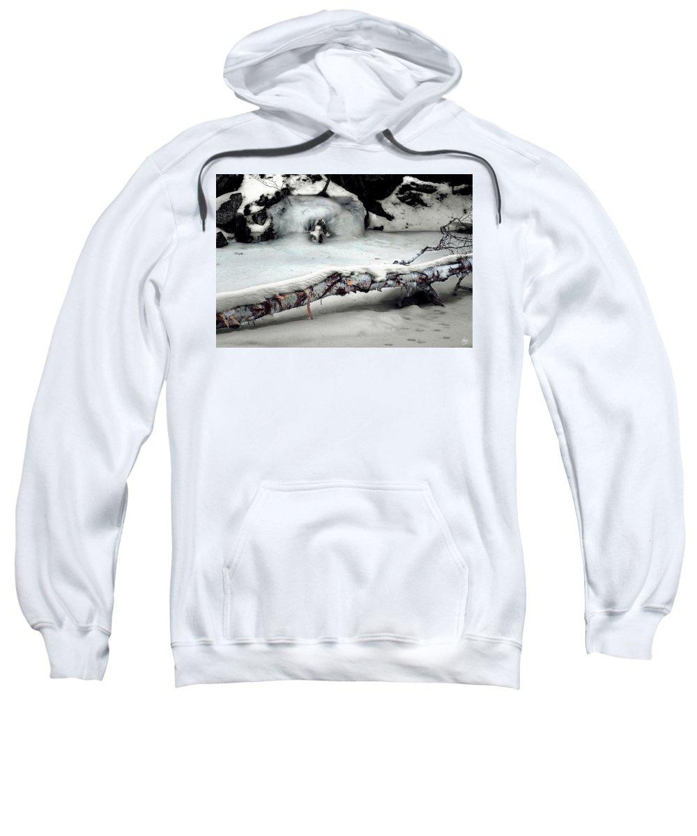 Birch Sweatshirt featuring the photograph Stinson Brook Birchfall by Wayne King