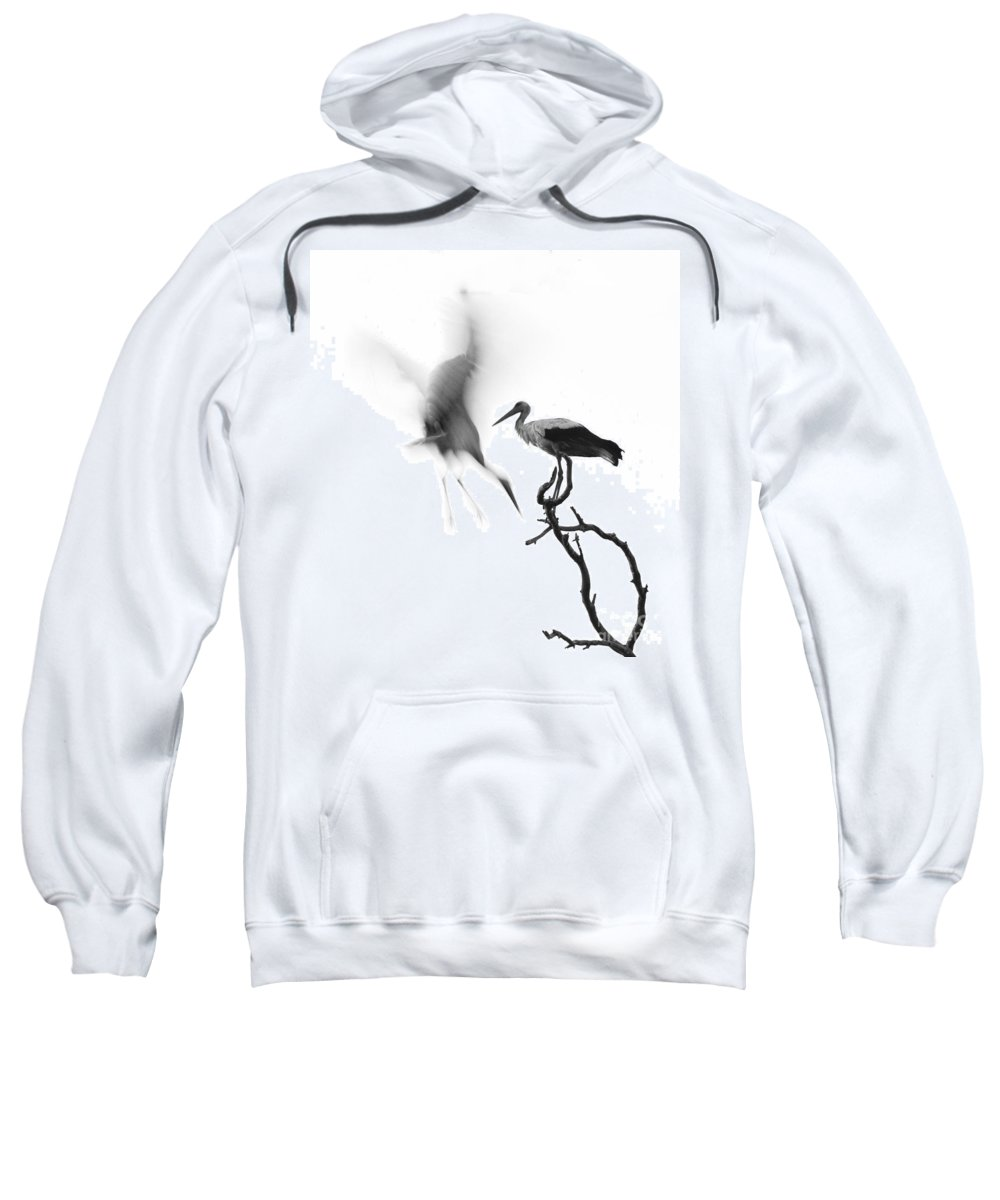 Stork Sweatshirt featuring the photograph Storks by Nahum Budin