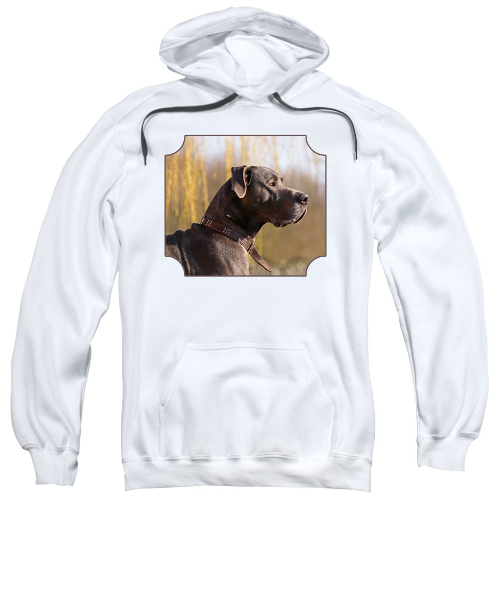 Great Dane Sweatshirt featuring the photograph Storm The Great Dane by Gill Billington