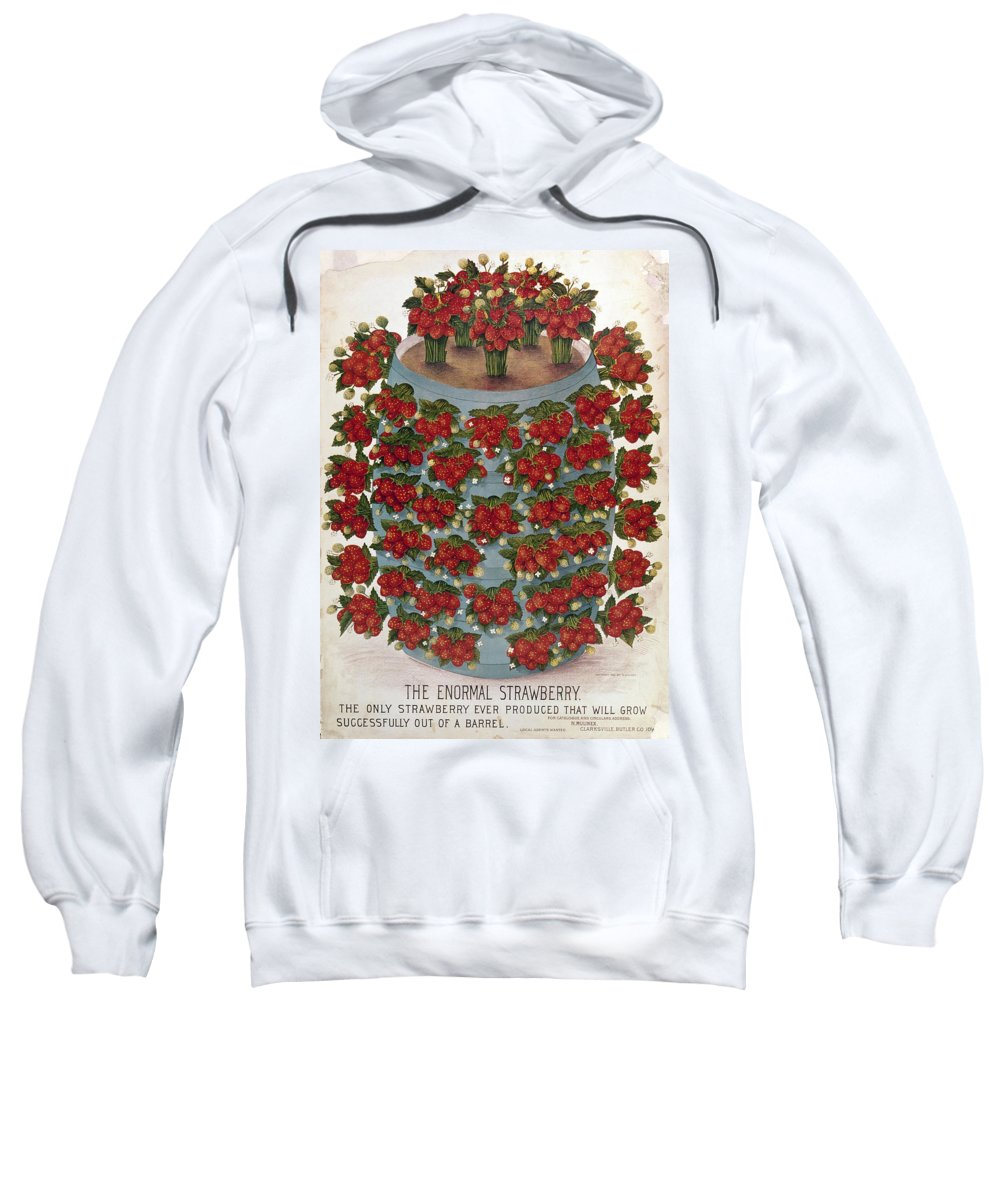 1889 Sweatshirt featuring the photograph Strawberries, 1889 by Granger