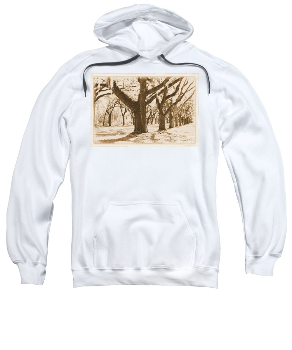Sepia Sweatshirt featuring the photograph Strong And Proud In The South - Old World by Carol Groenen