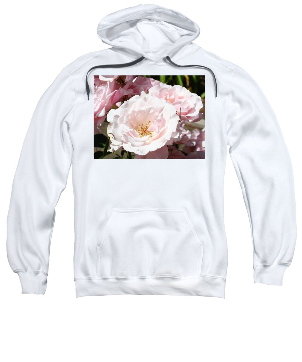 Rose Sweatshirt featuring the photograph Summer Rose Garden Pink Flowers Baslee Troutman by Baslee Troutman