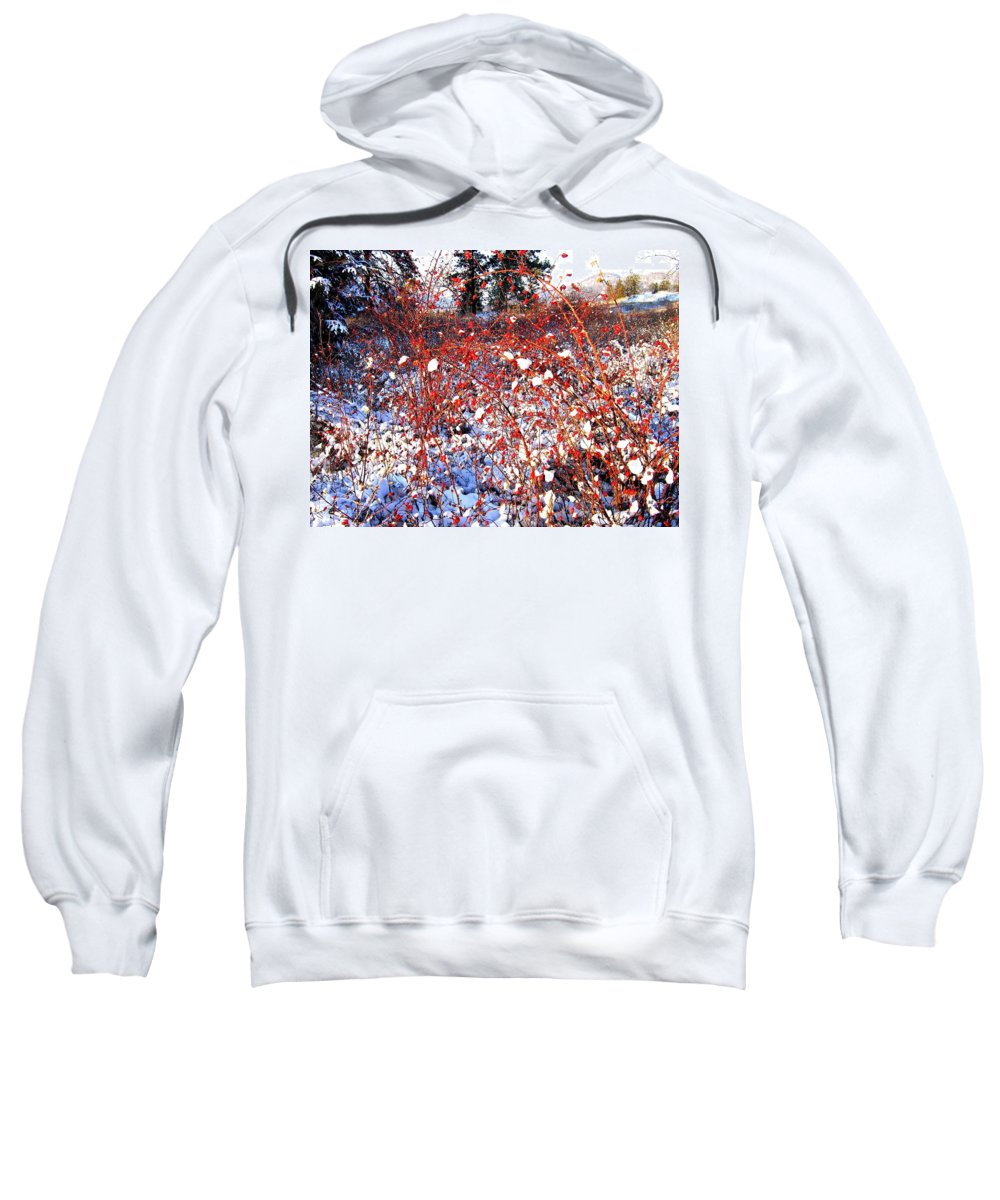 Rosehips Sweatshirt featuring the photograph Sundrenched Rosehips by Will Borden