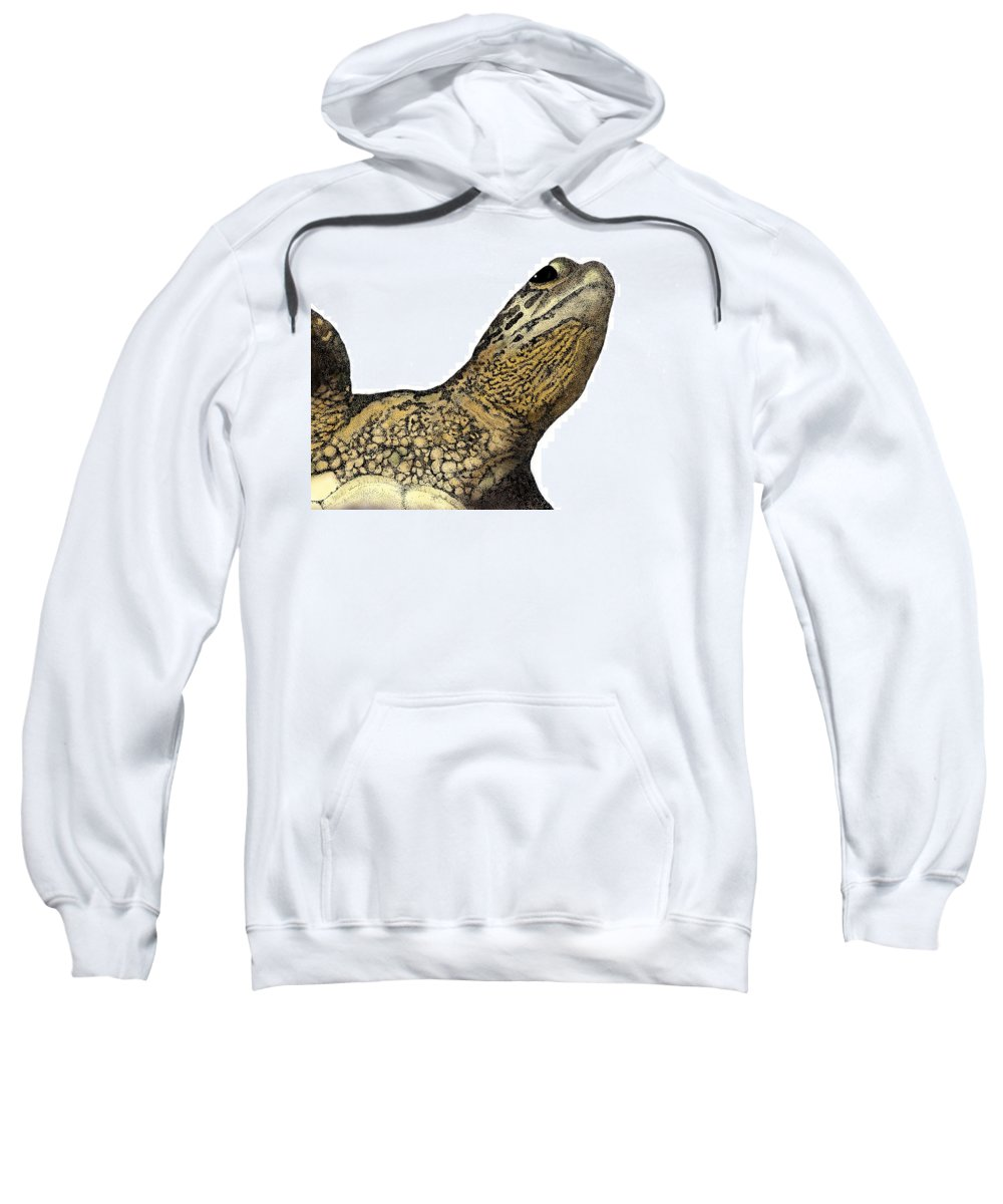 Sea Turtle Sweatshirt featuring the drawing Surface by David Weaver