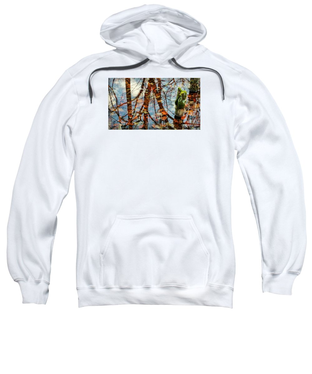 Swamp Sweatshirt featuring the photograph Swamp Reflections by Beth Ferris Sale